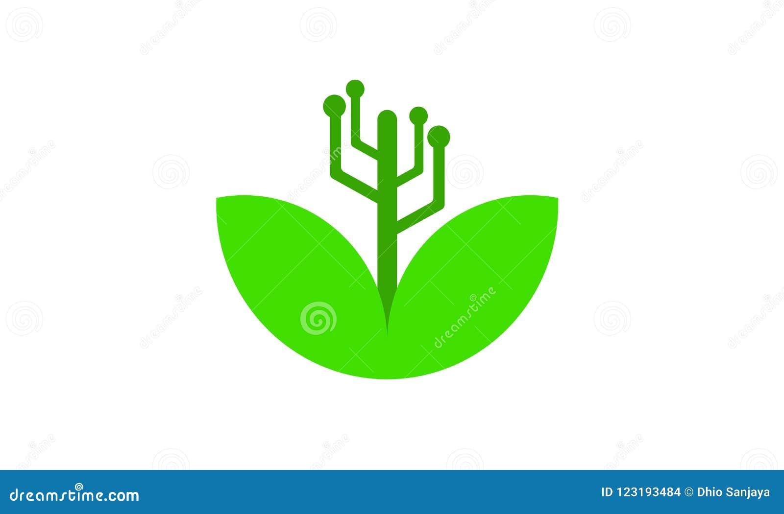 植物,叶子,草,商标,自然,绿色,传染媒介象套