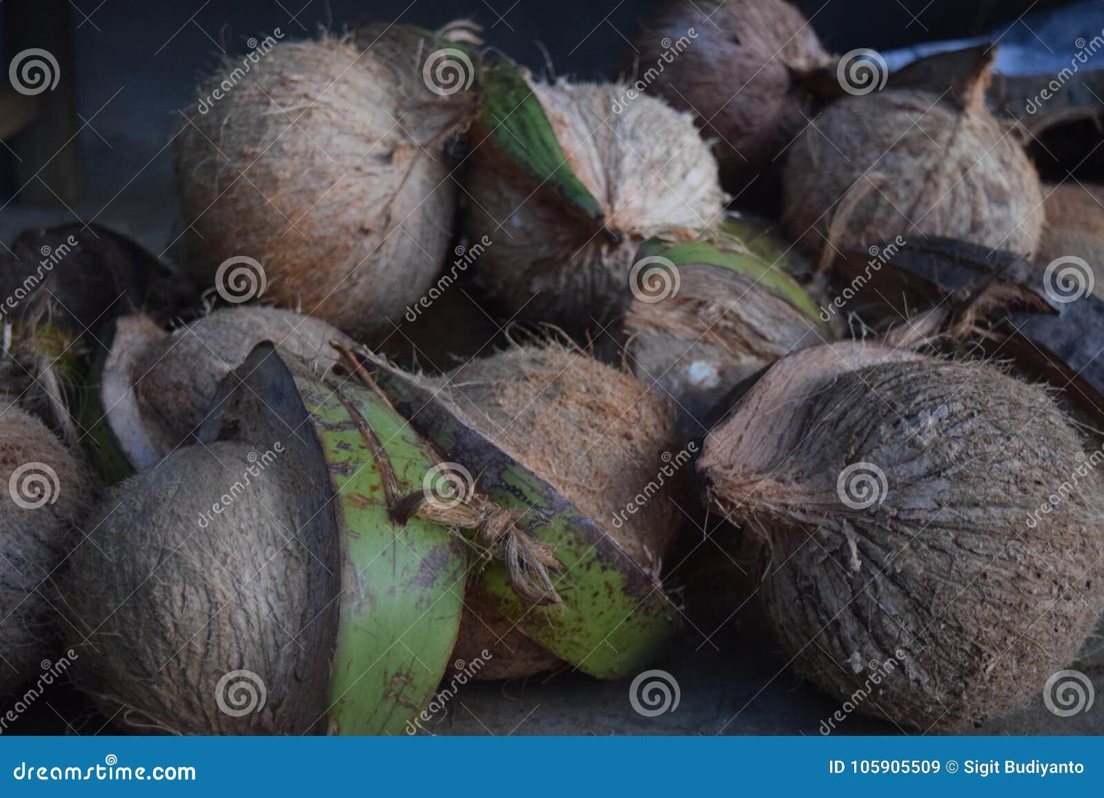 椰子准备好待售
