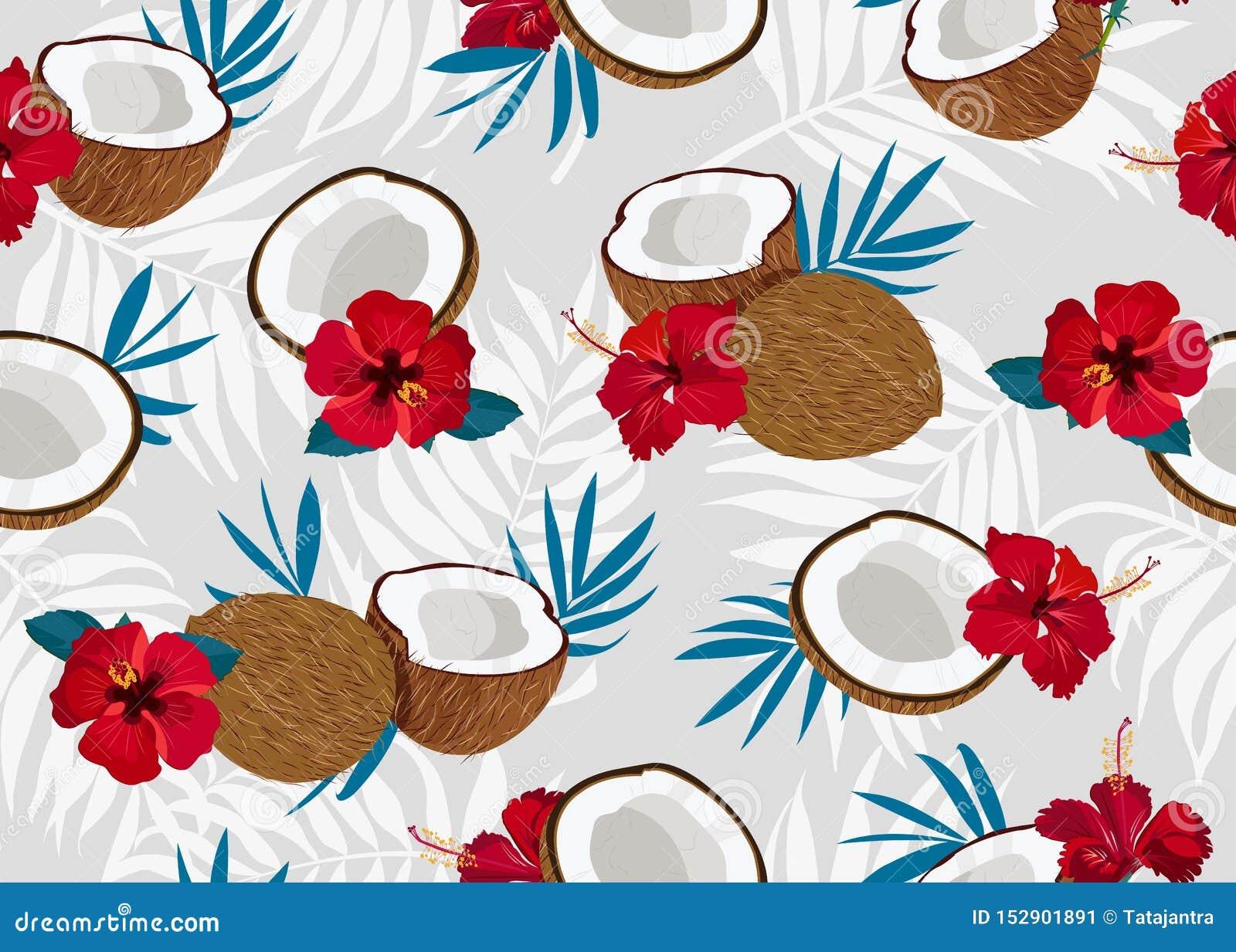 椰子果子无缝的样式整体和片断与蓝色叶子在灰色背景 o
