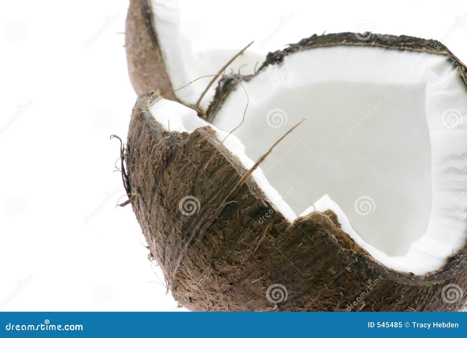 Download 椰子 库存图片. 图片 包括有 食物, 自然, 成份, 健康, 椰子, 结构树, 牛奶, korma, 掌上型计算机 - 545485