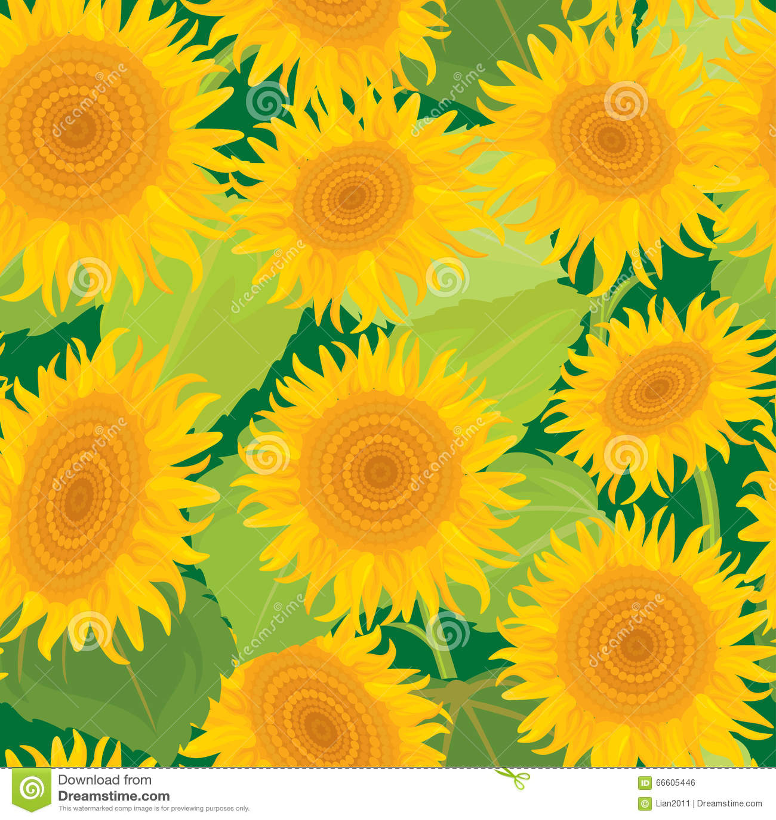 模式无缝的向日葵 夏季