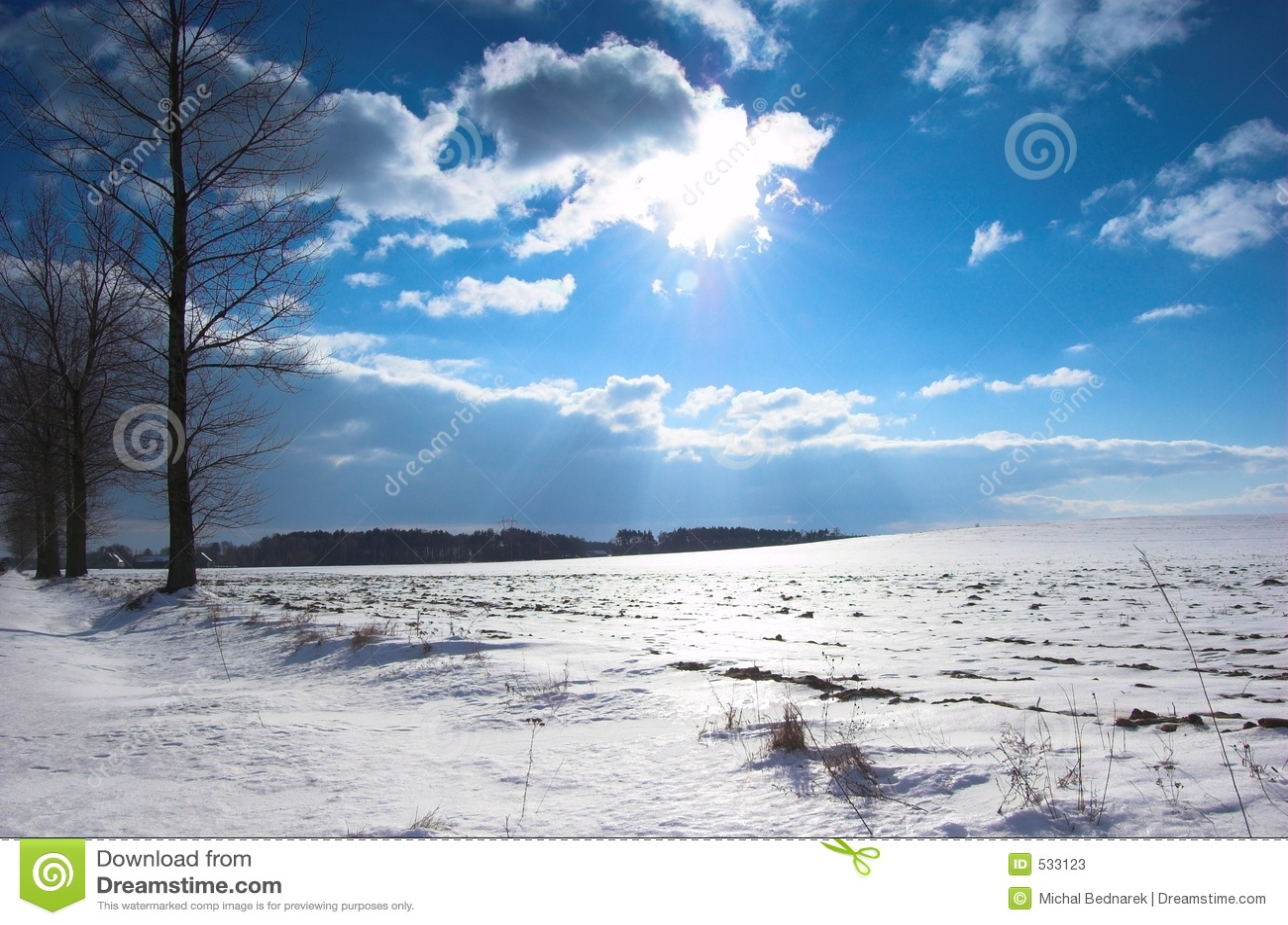 Download 横向冬天 库存图片. 图片 包括有 灌木, 颜色, 蓝色, 本质, 冬天, 风景, 草甸, 对比, 空白, 横向 - 533123