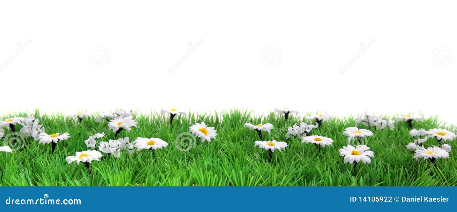 横幅花草甸