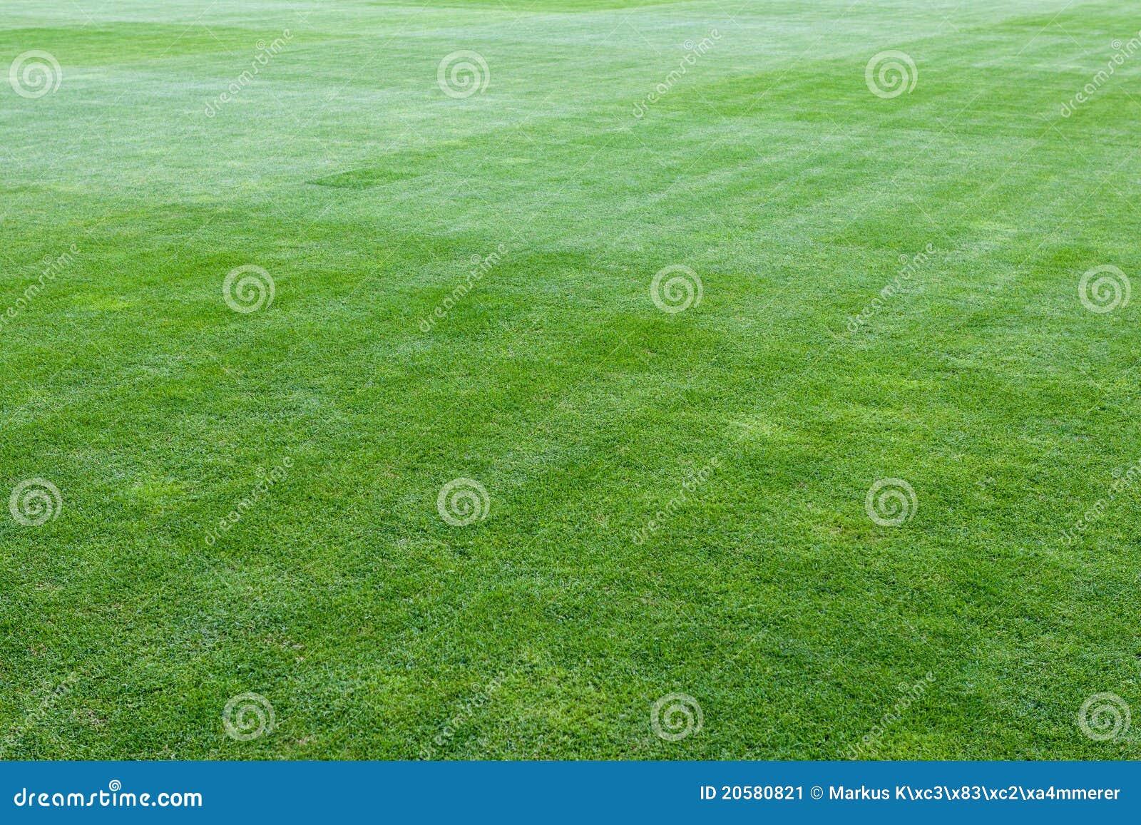橄榄球绿色操场体育场