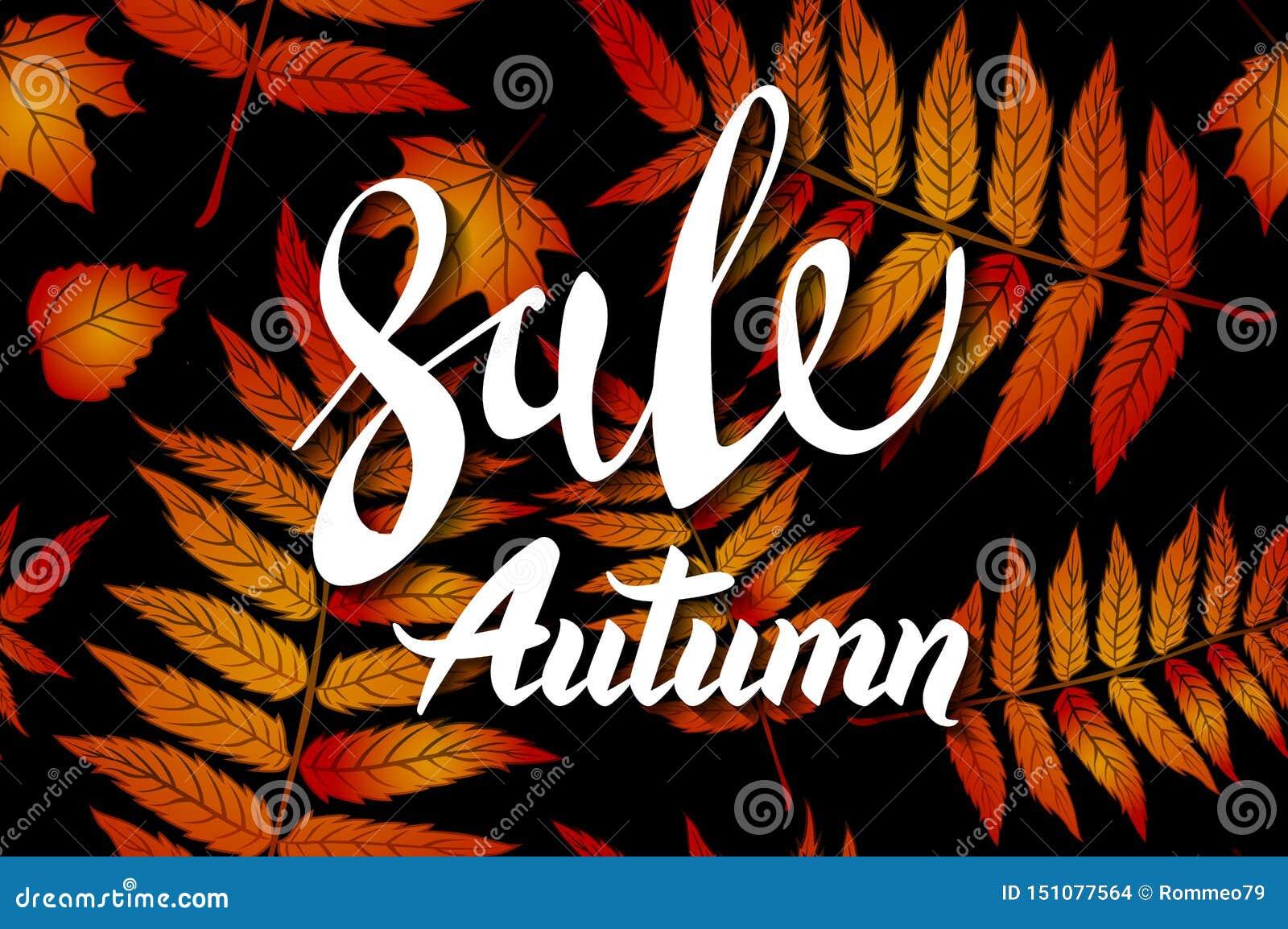 橙色秋天销售背景、手拉的秋天书法与落的叶子,网横幅、购物的销售或者季节性海报,