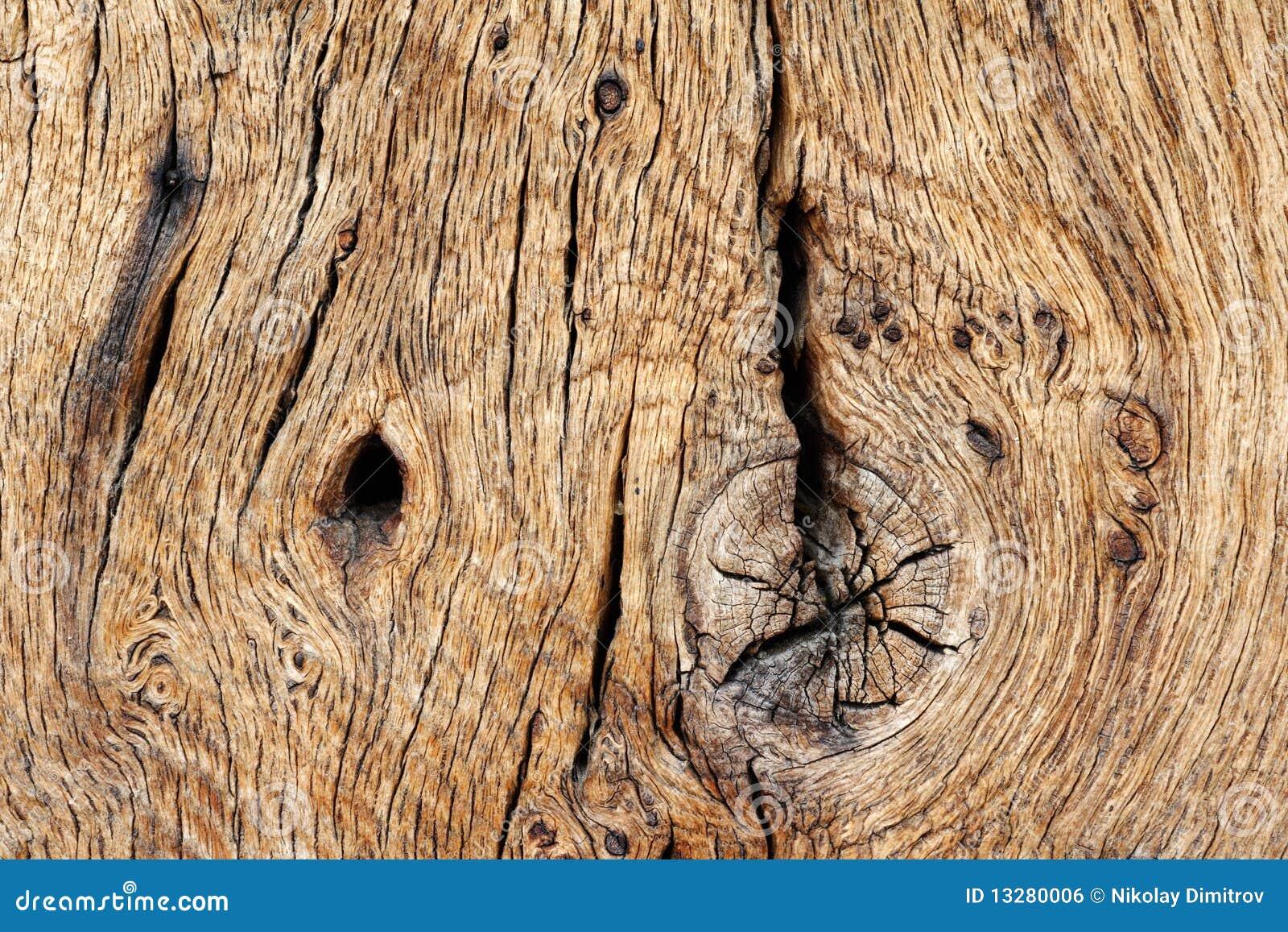 橡木老纹理木材木头