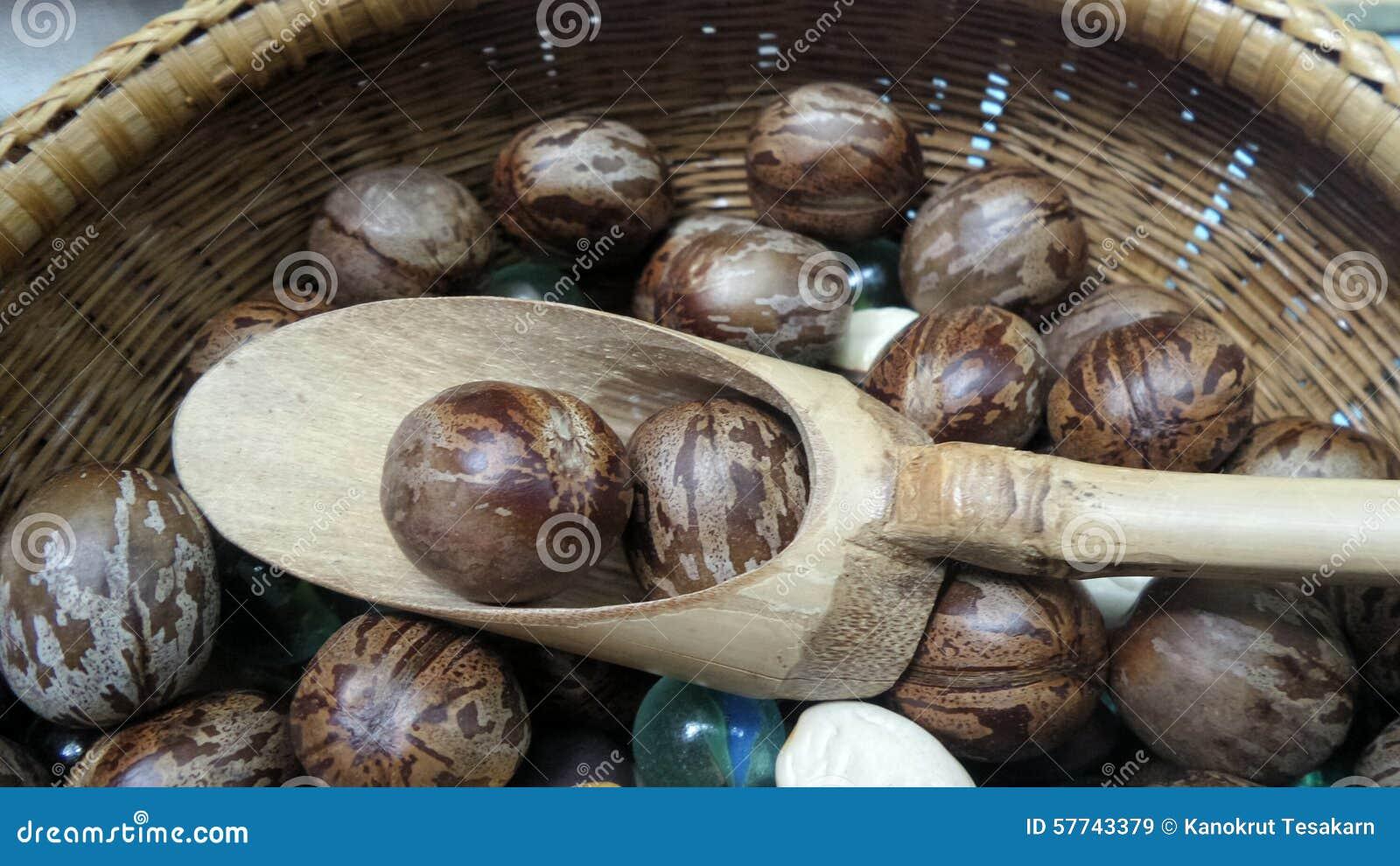 橡胶果子球和竹子匙子在篮子在供营商报亭