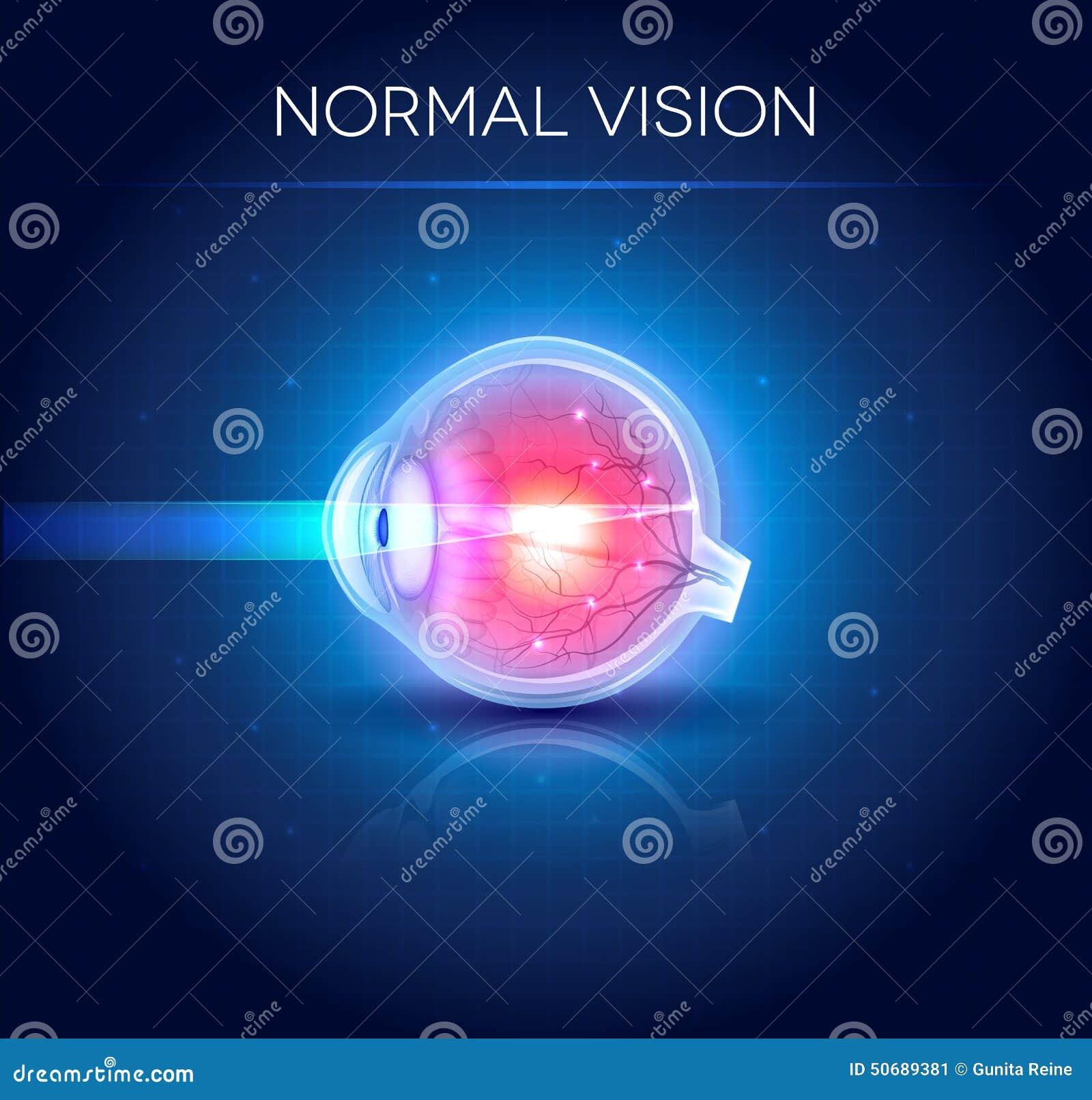 Download 正常眼睛视觉蓝色背景 向量例证. 插画 包括有 关心, 绘制, 电池, 光学, 艺术, 竹子, 交叉, 爱好健美者 - 50689381