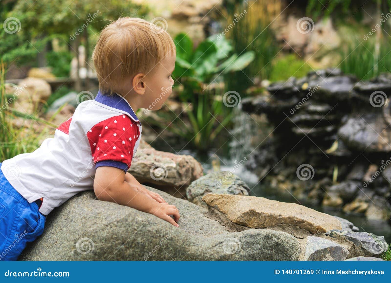 步行的英俊的三岁的男孩孩子在池塘的公园在一好日子