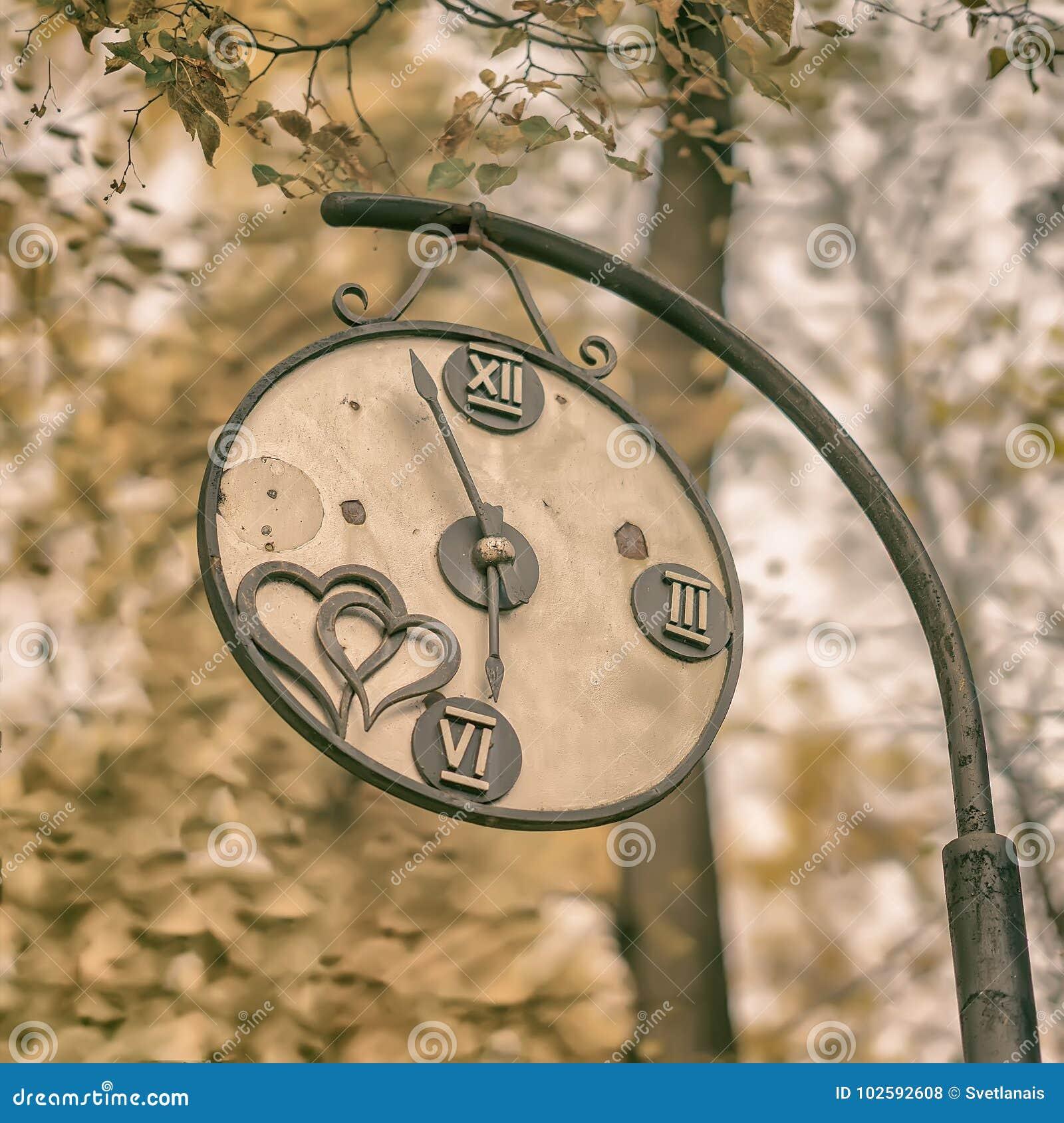 残破的装饰葡萄酒手表特写镜头在一个老公园 季节的变动,秋天乡愁心情的概念