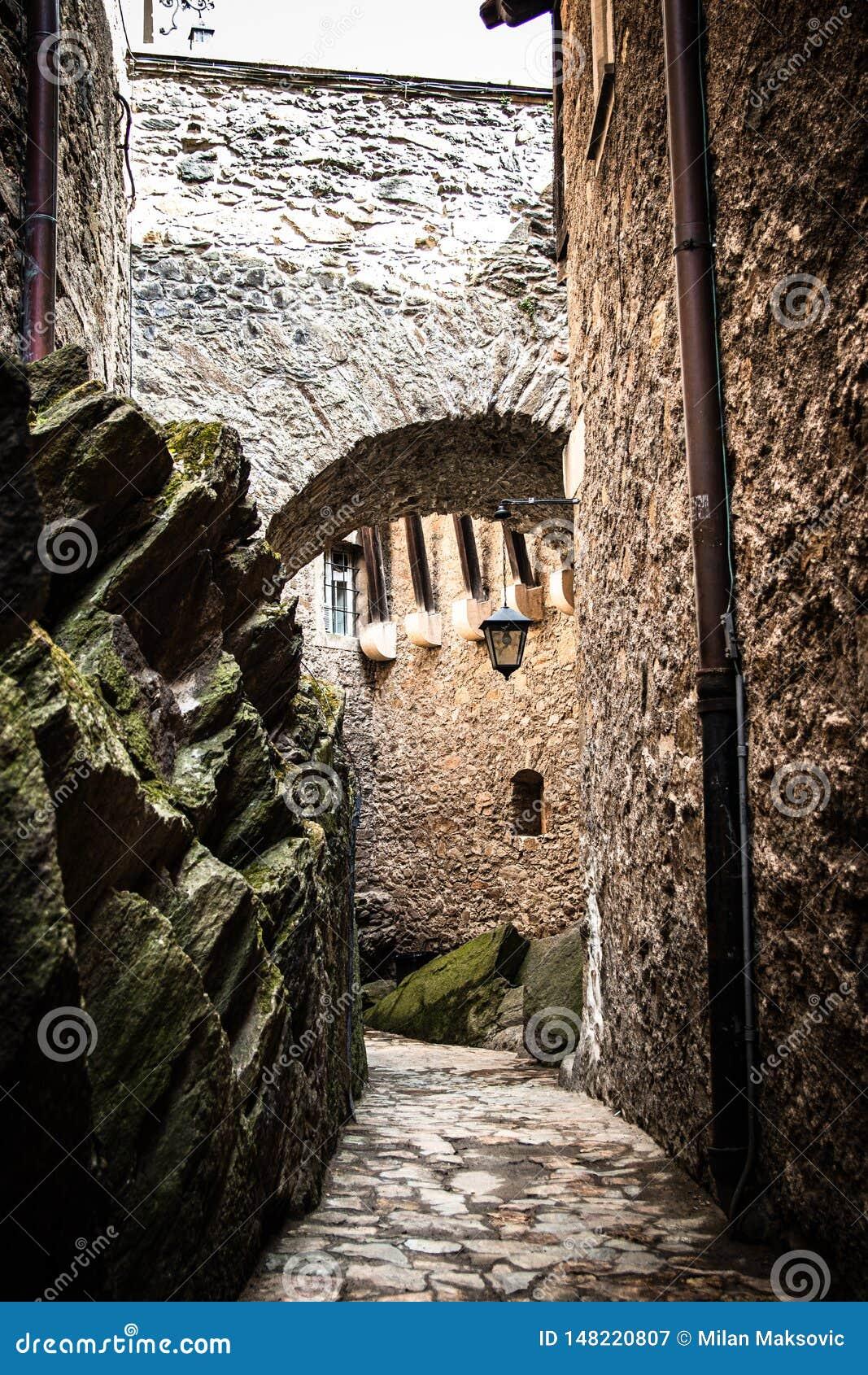 段落在Czocha城堡的桥梁下在波兰