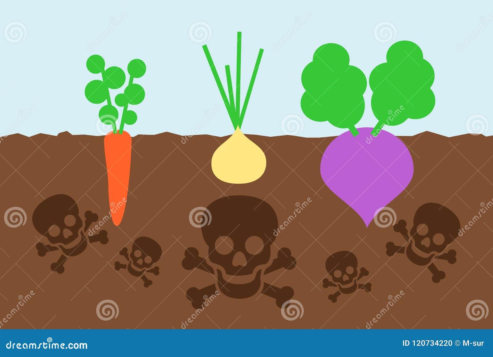 毒化学制品沾染菜庄稼