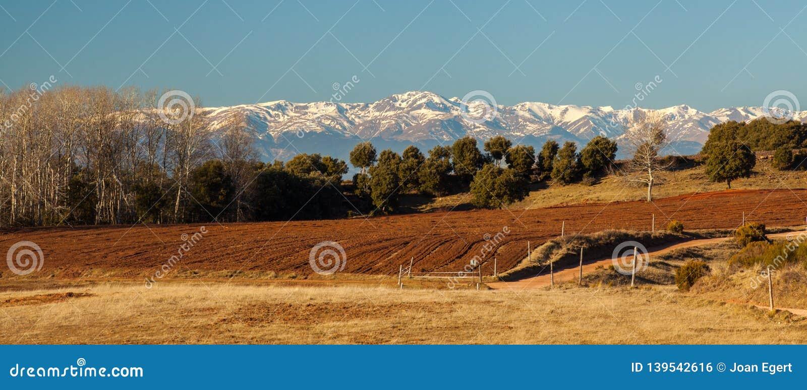 比利牛斯积雪的山南部的视图