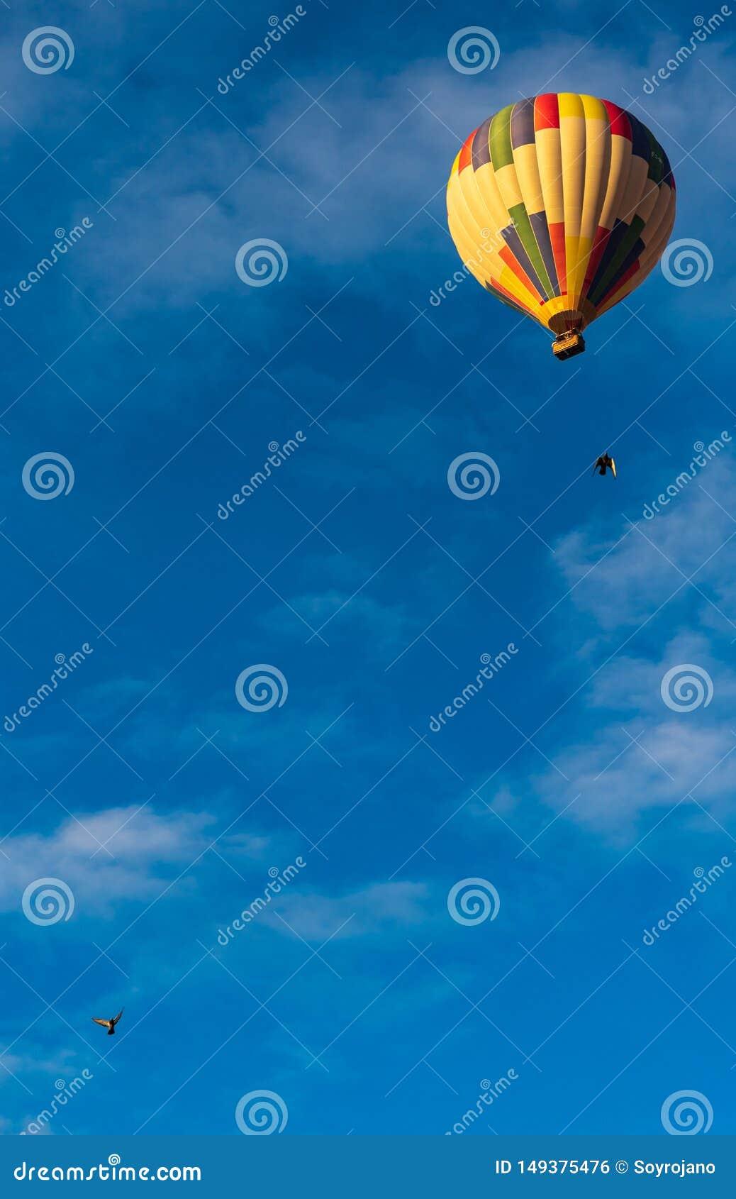 气球和鸽子