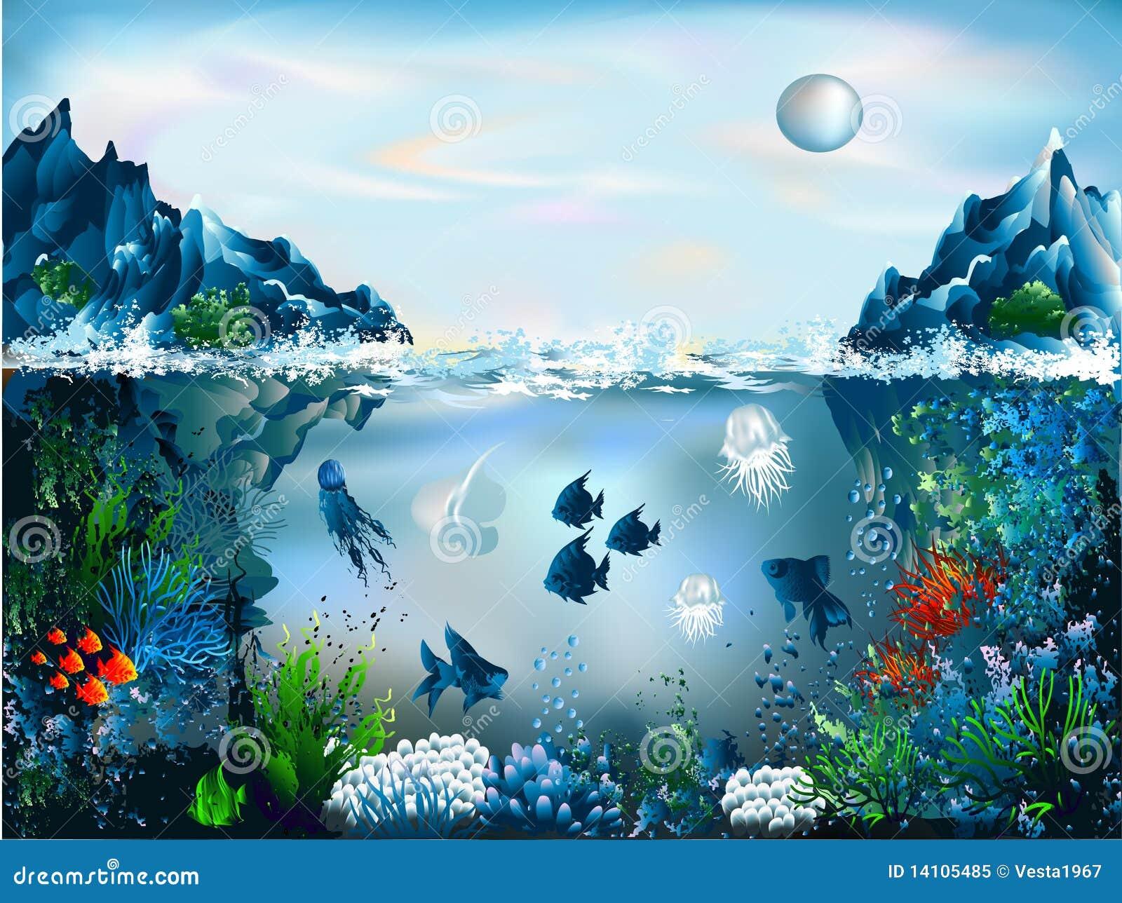 水下的世界
