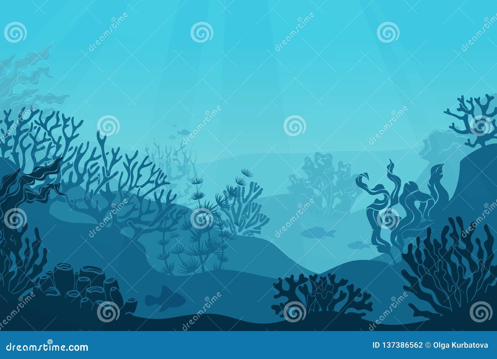 水下的海景 海底,海里与海草 与珊瑚剪影的黑暗的盐水 海洋礁石底部