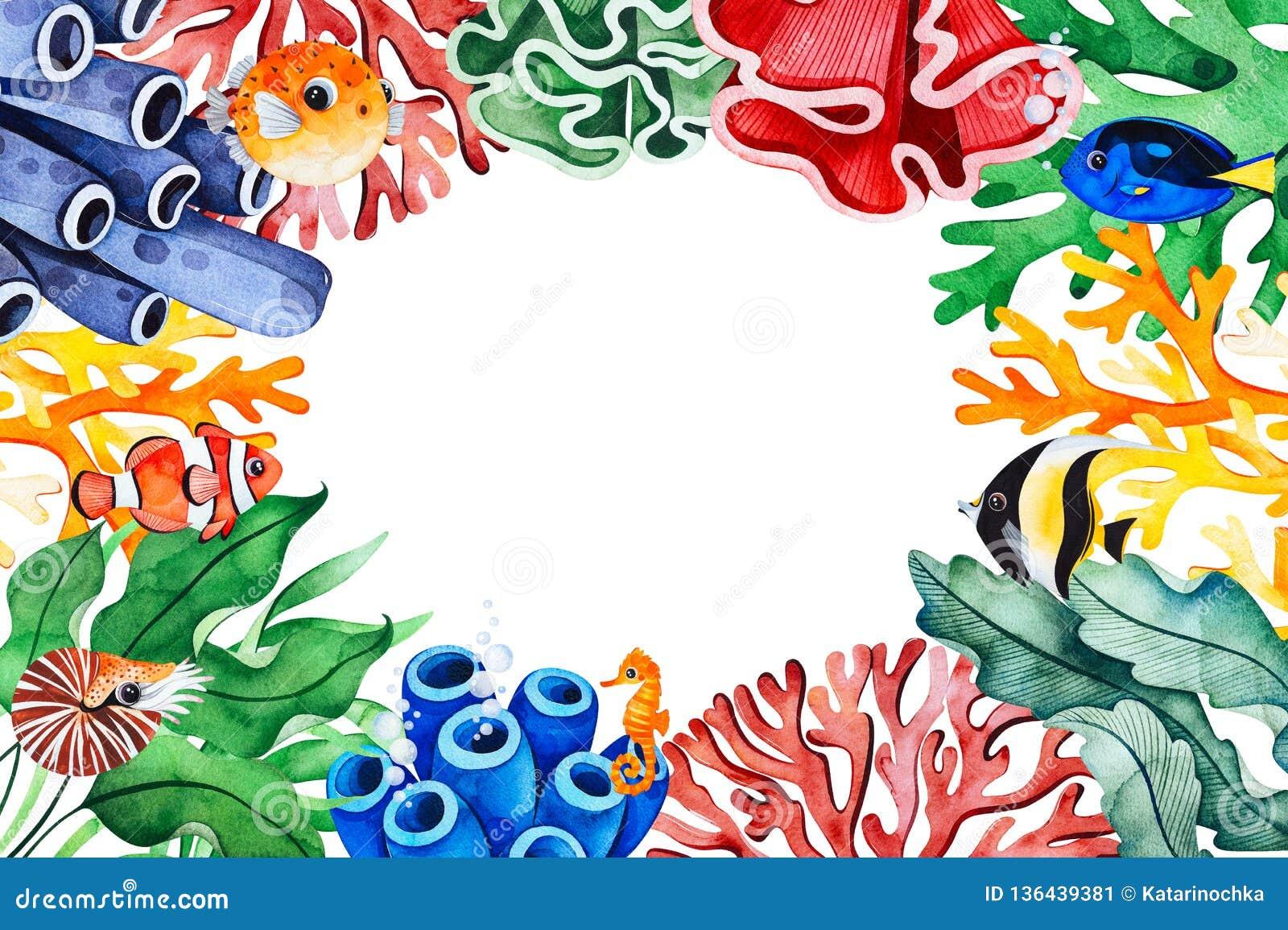 水下的生物构筑与多彩多姿的珊瑚,海草,鱼,海象的边界