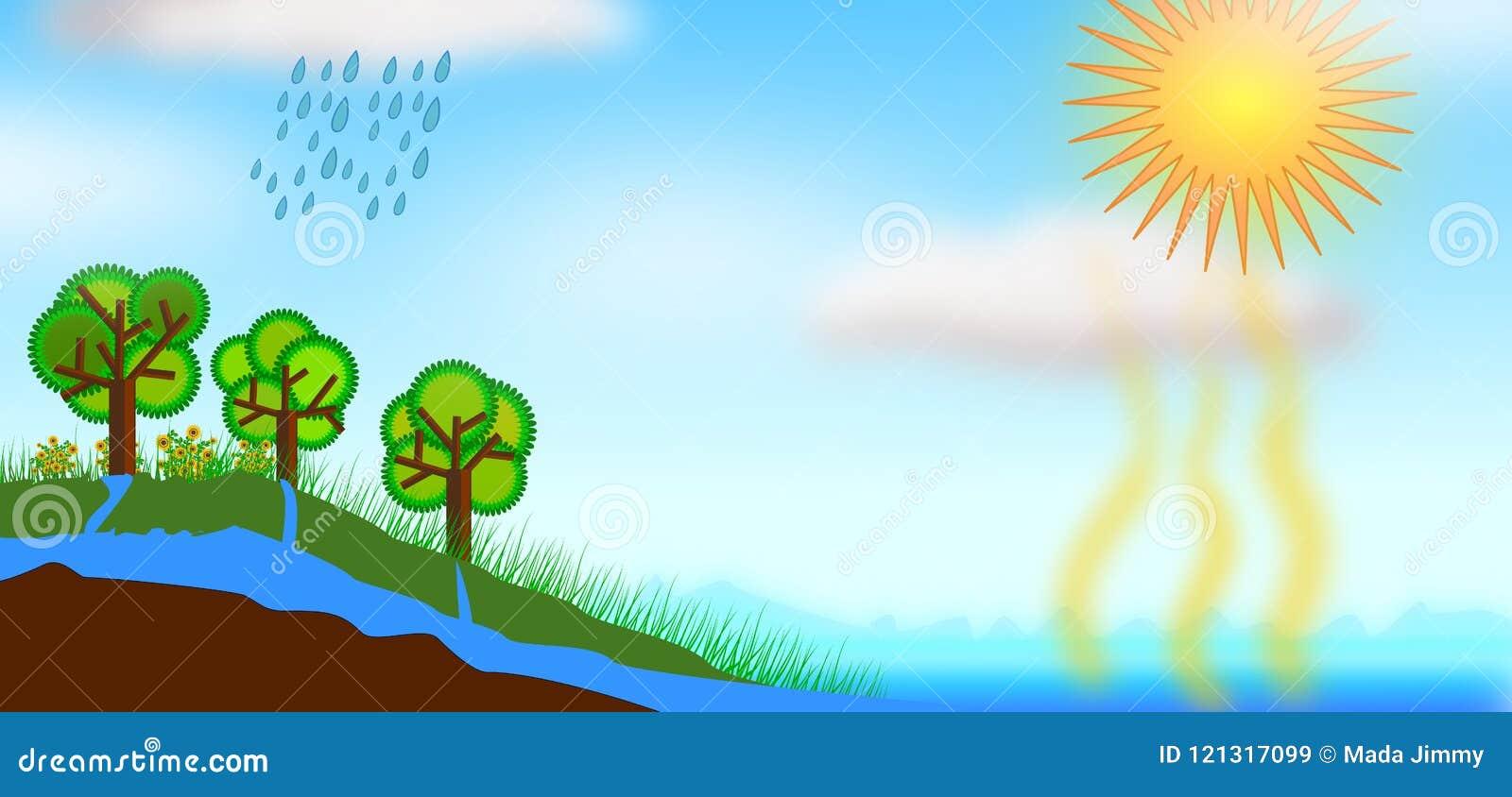 水周期概念例证