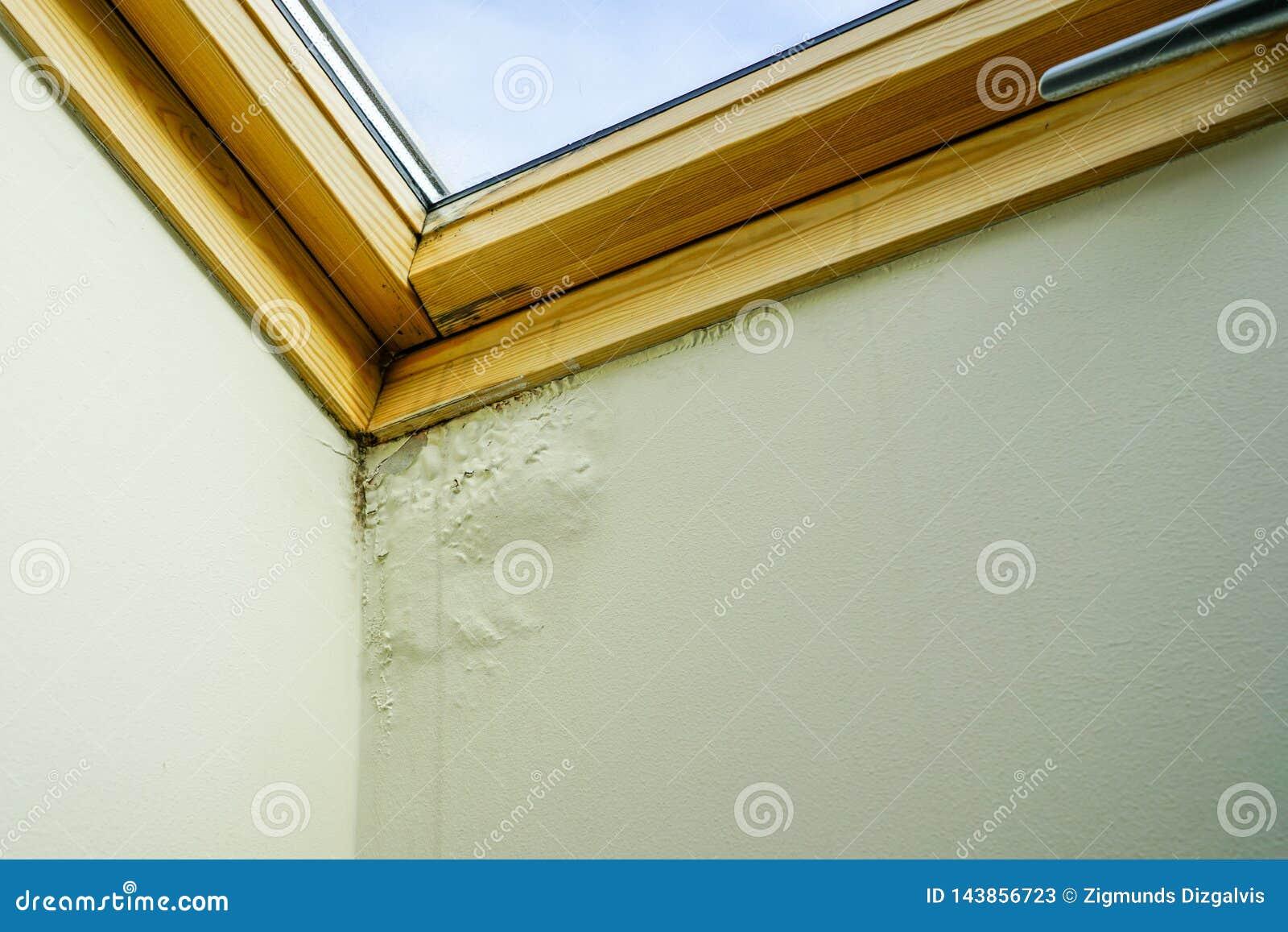 水和湿气损坏的天花板在屋顶窗口旁边