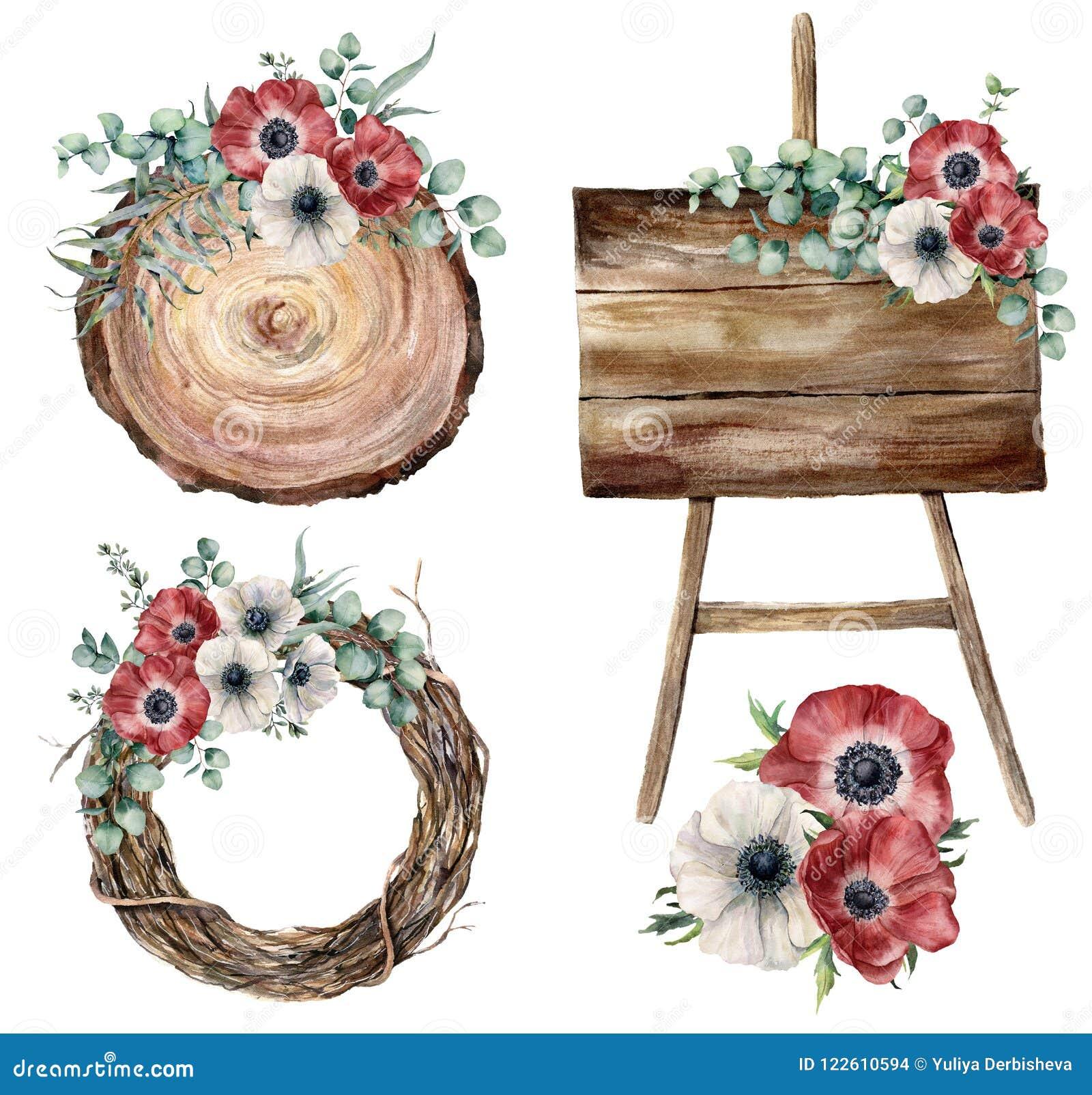 水彩党装饰集合 手画玉树叶子和brznches,银莲花属,植物,树花圈,木织地不很细