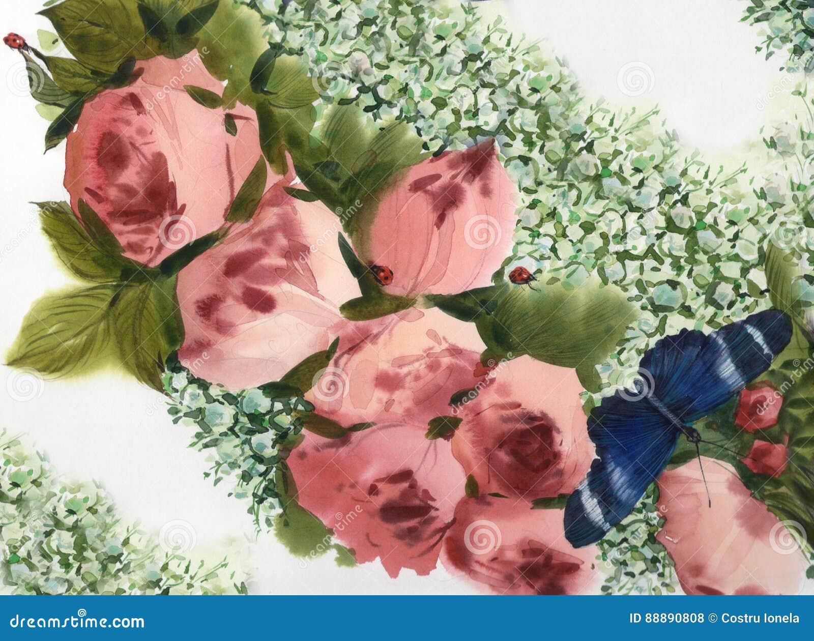 水彩桃红色玫瑰背景