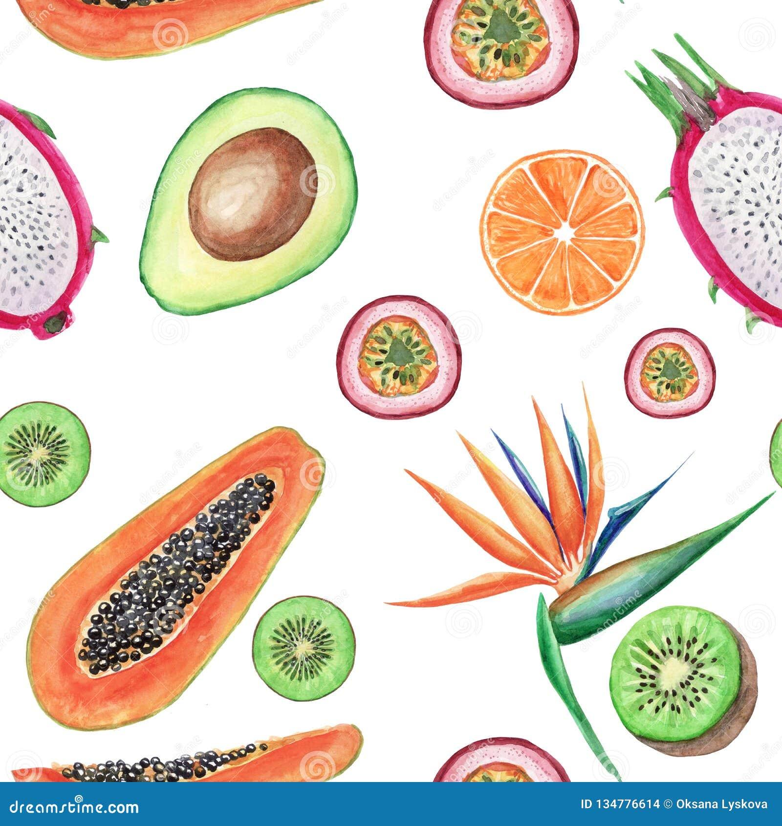 水彩热带水果无缝的样式 手画例证:鲕梨、番木瓜、桔子、猕猴桃、maracuja和鹤望兰