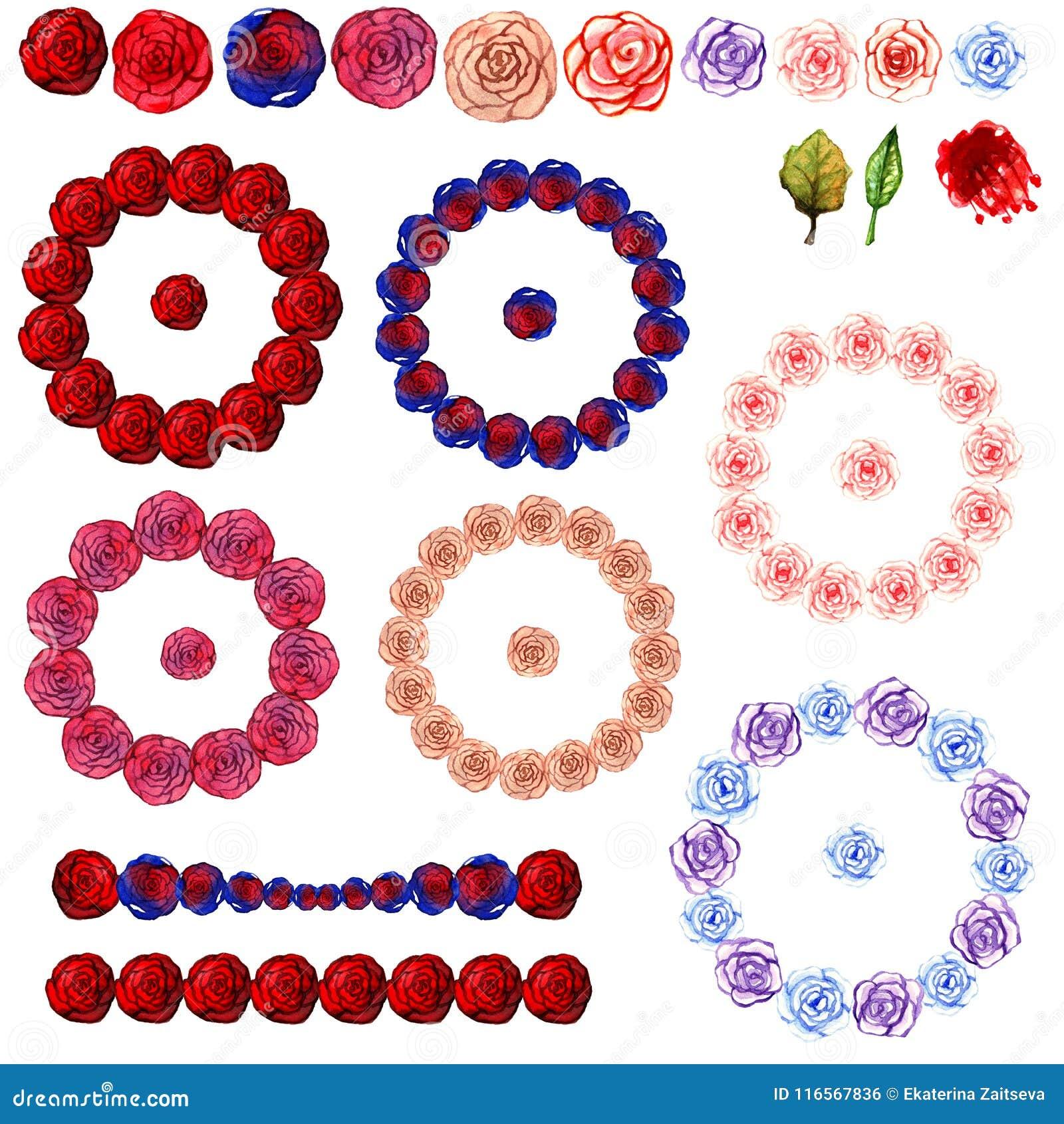 水彩花圈和装饰品从多彩多姿的玫瑰色花红色蓝色精美桃红色秀丽隔绝了图画在一白色backgr