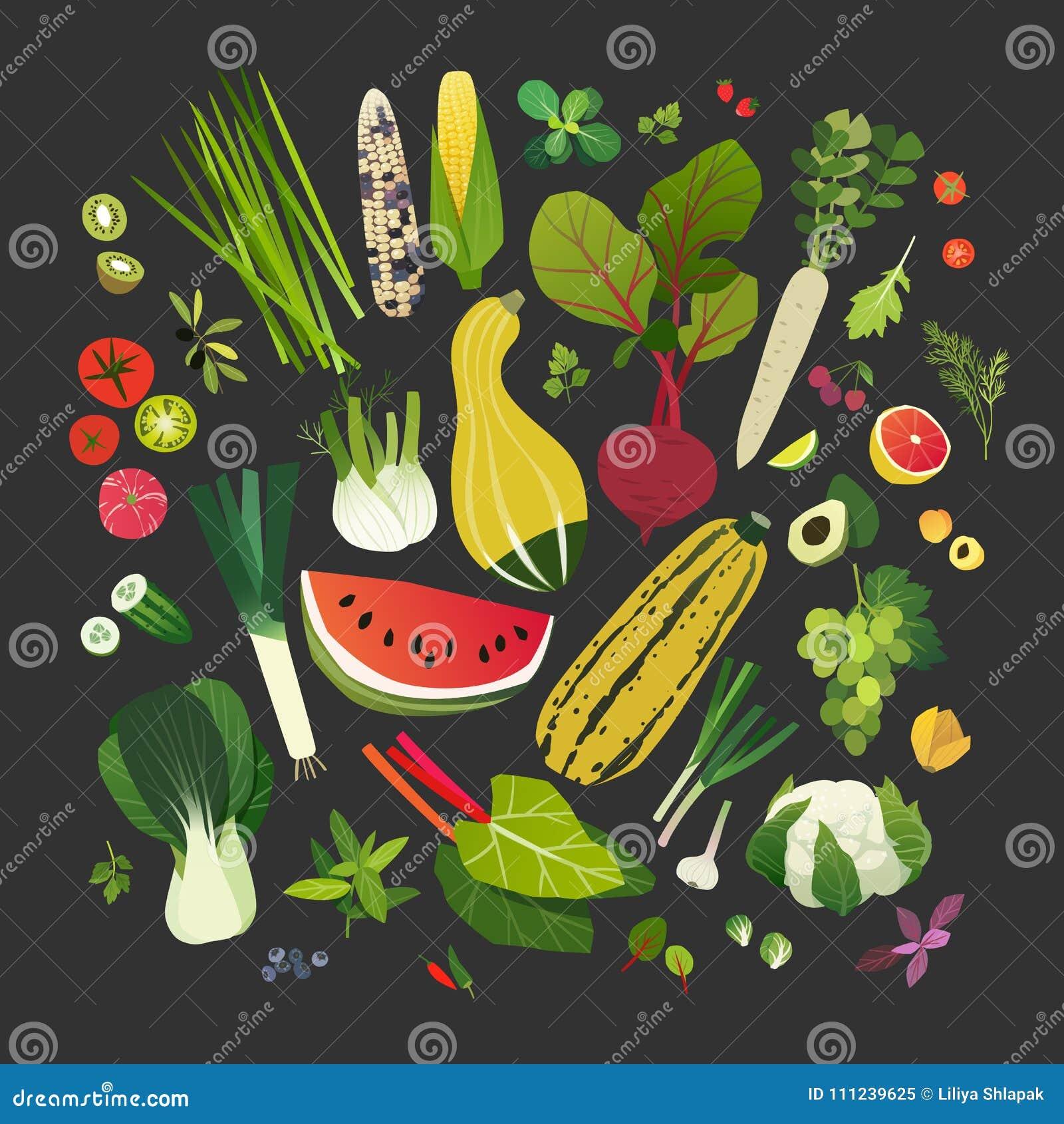 水果、蔬菜、叶茂盛绿色和共同的草本的汇集