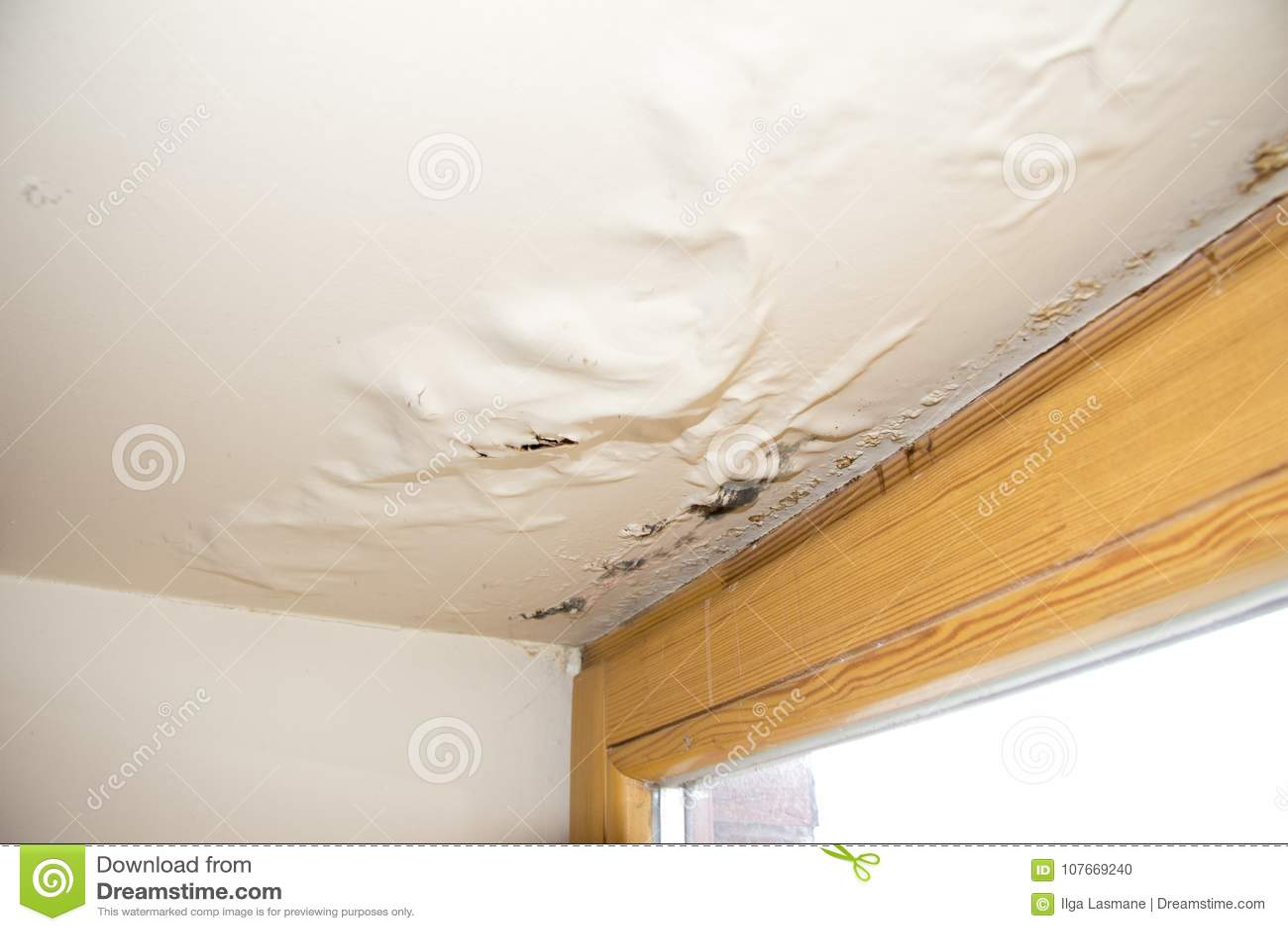 水,湿气在窗口旁边损坏了天花板