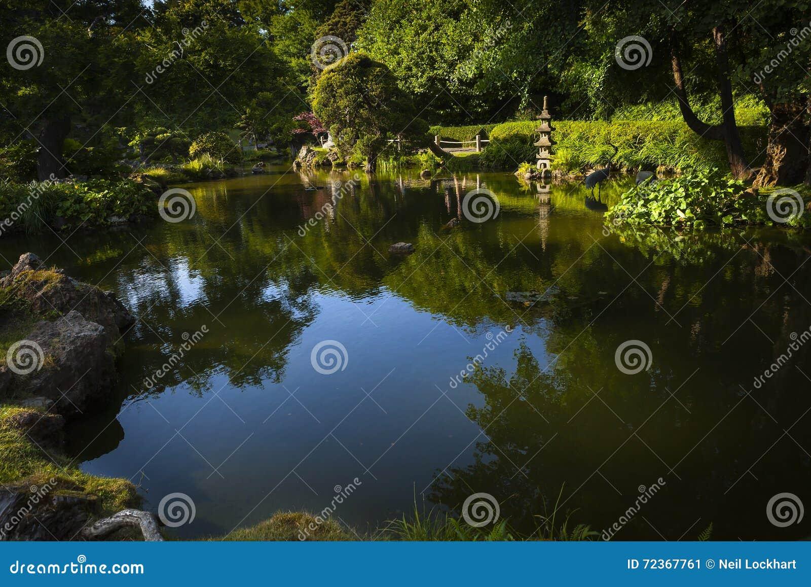 水池在日本庭院,旧金山,加利福尼亚里