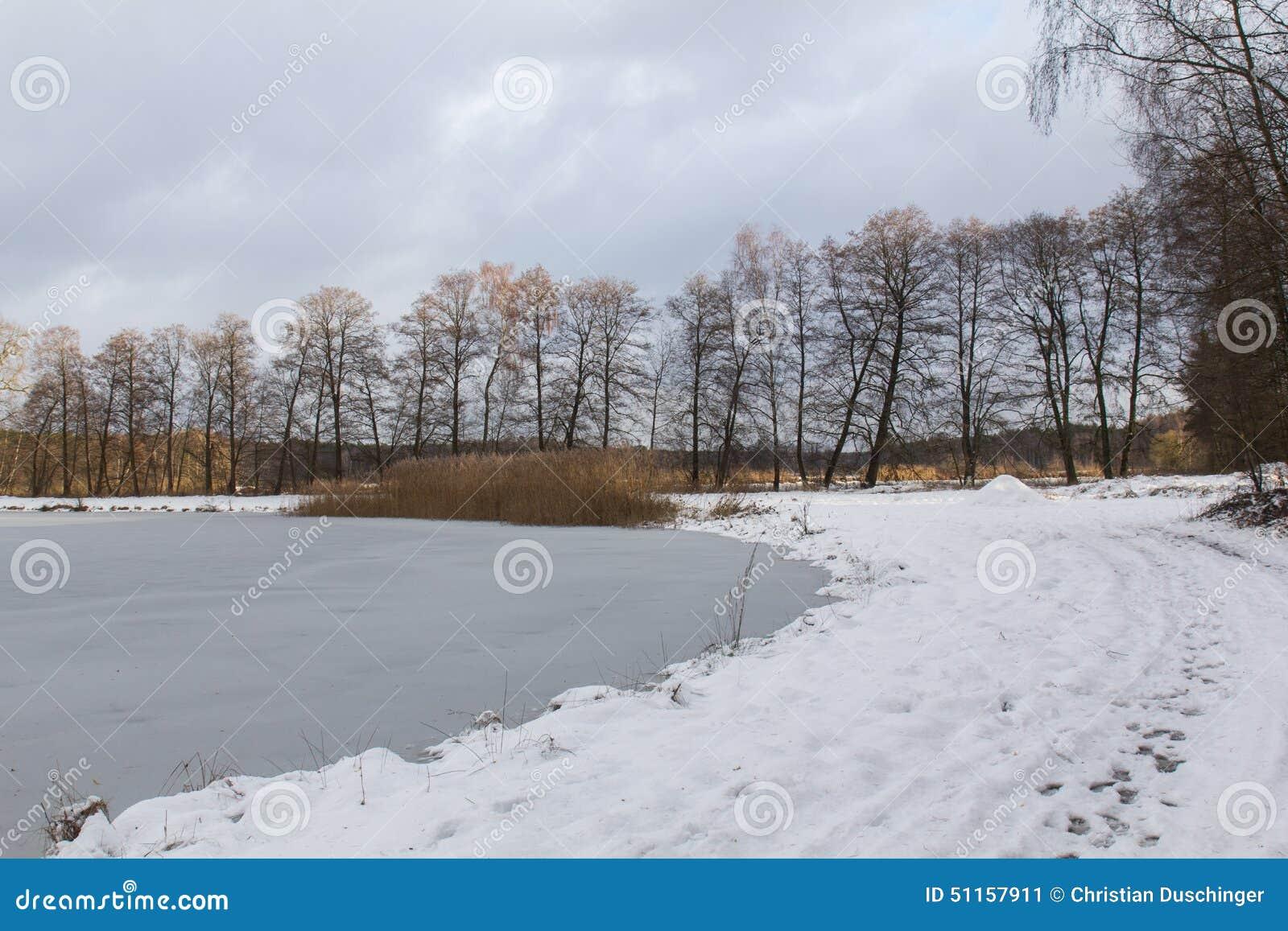 池塘在冬天