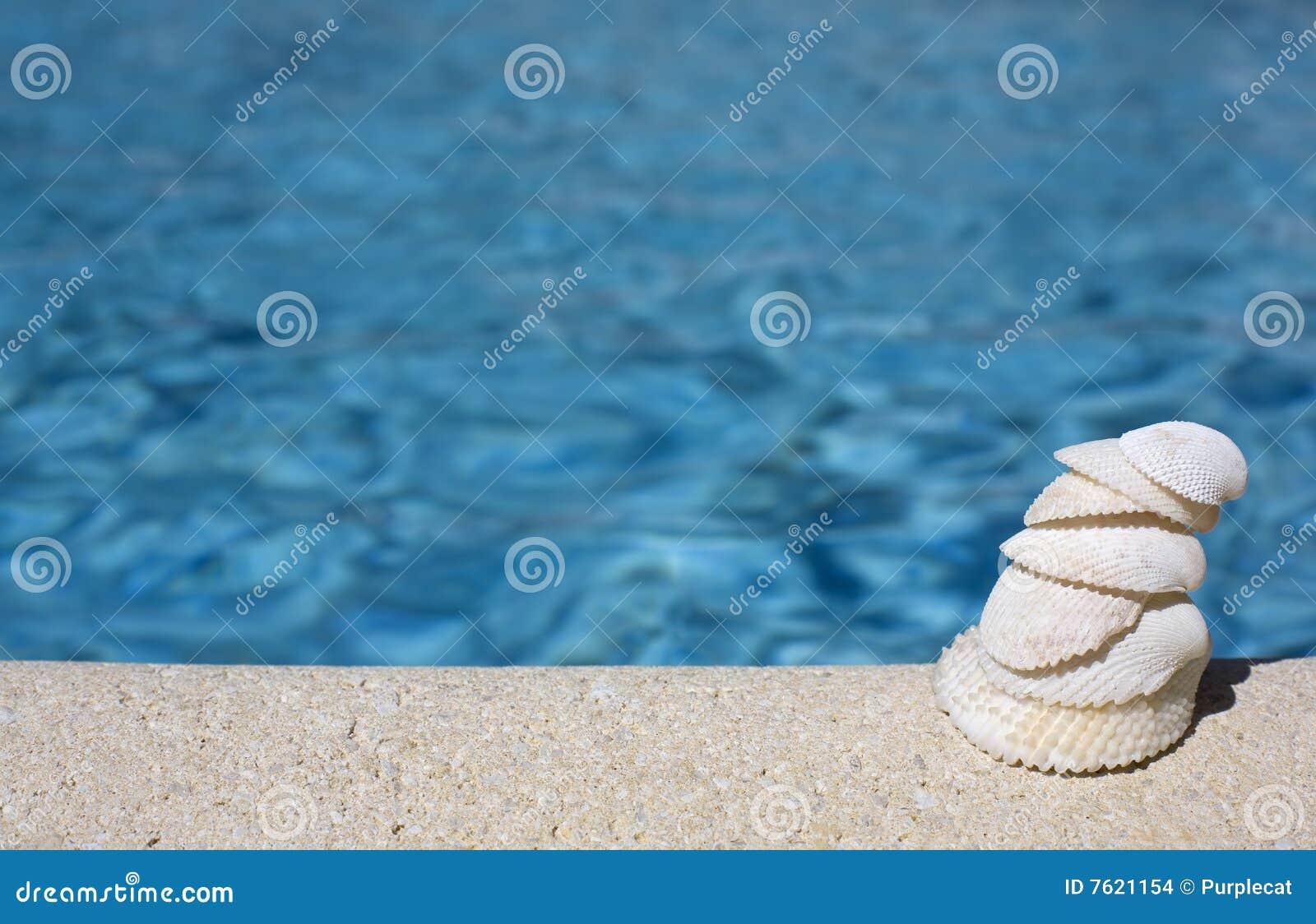 池贝壳游泳