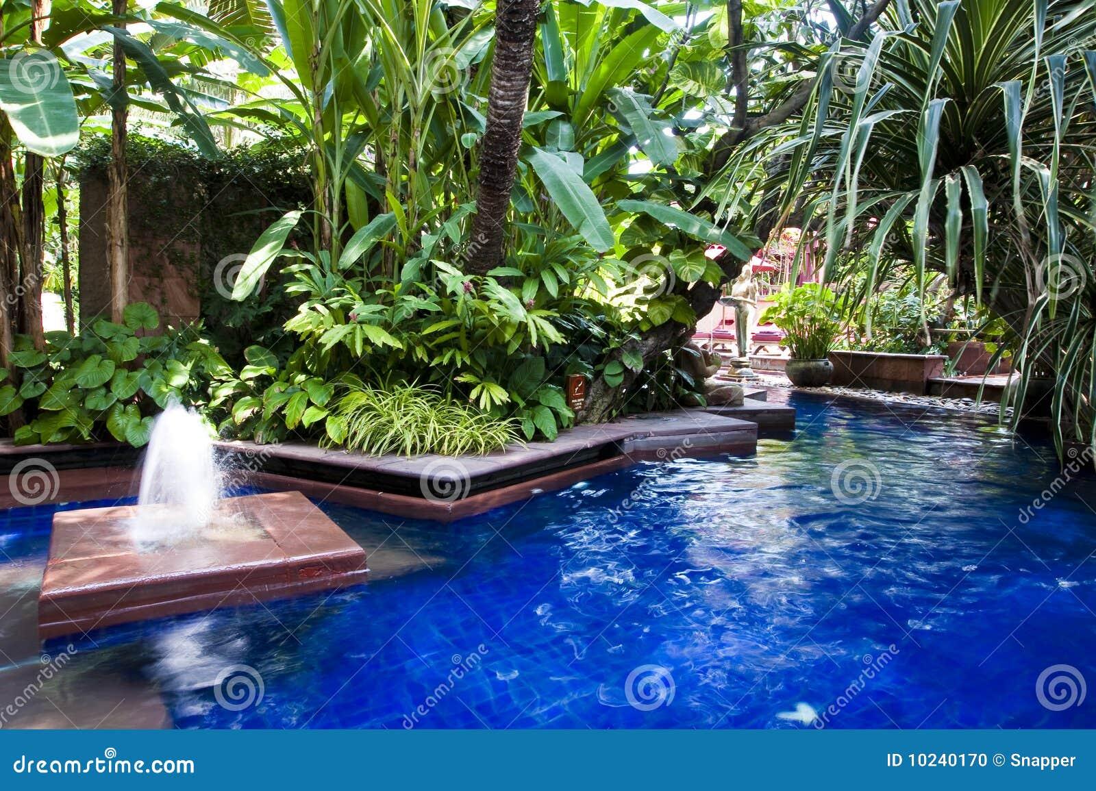 池swmming热带