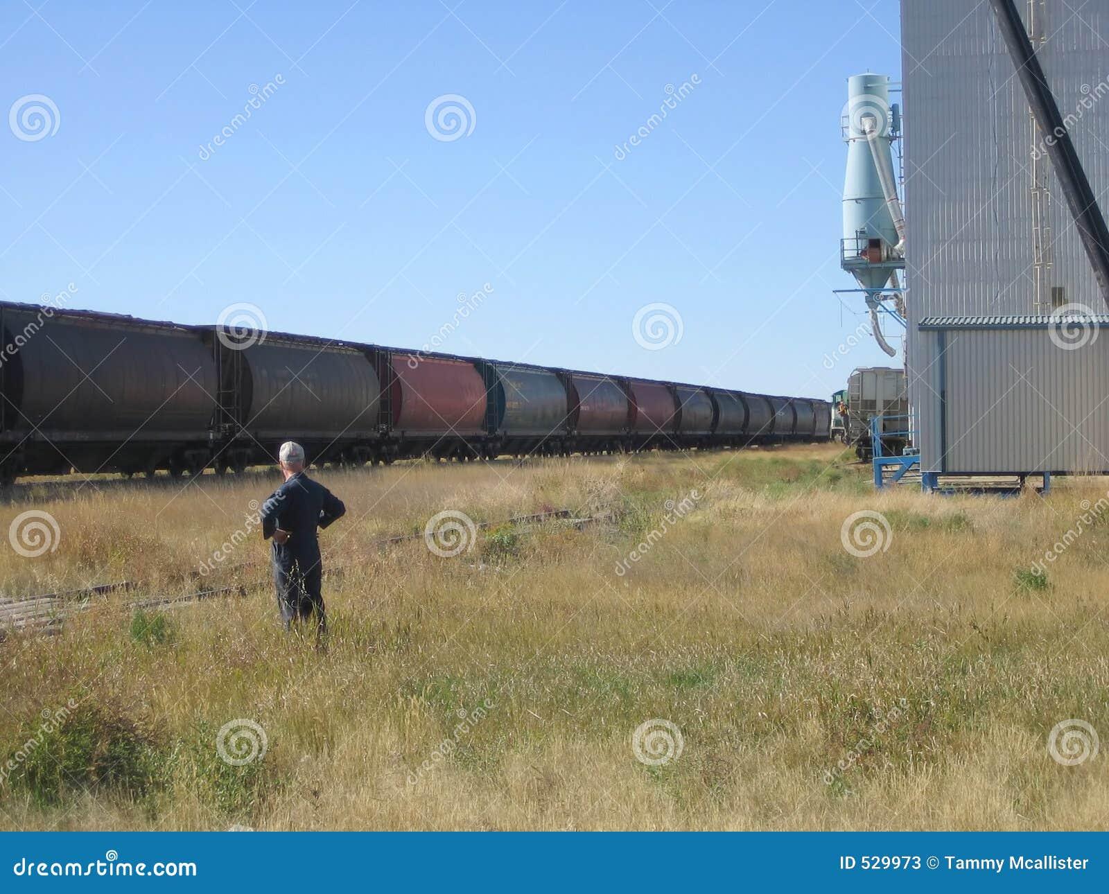 Download 汽车拉铁路运输注意 库存图片. 图片 包括有 谷物, 事假, 机车, 铁路, 行业, 生产, 铁路运输, 岗位 - 529973