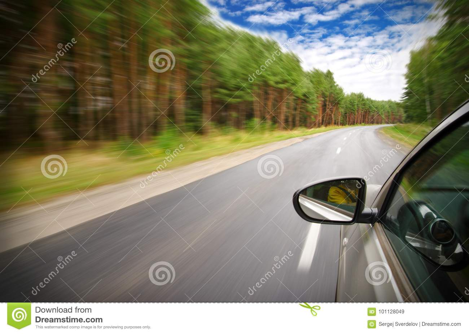 汽车移动以最快速度在森林里