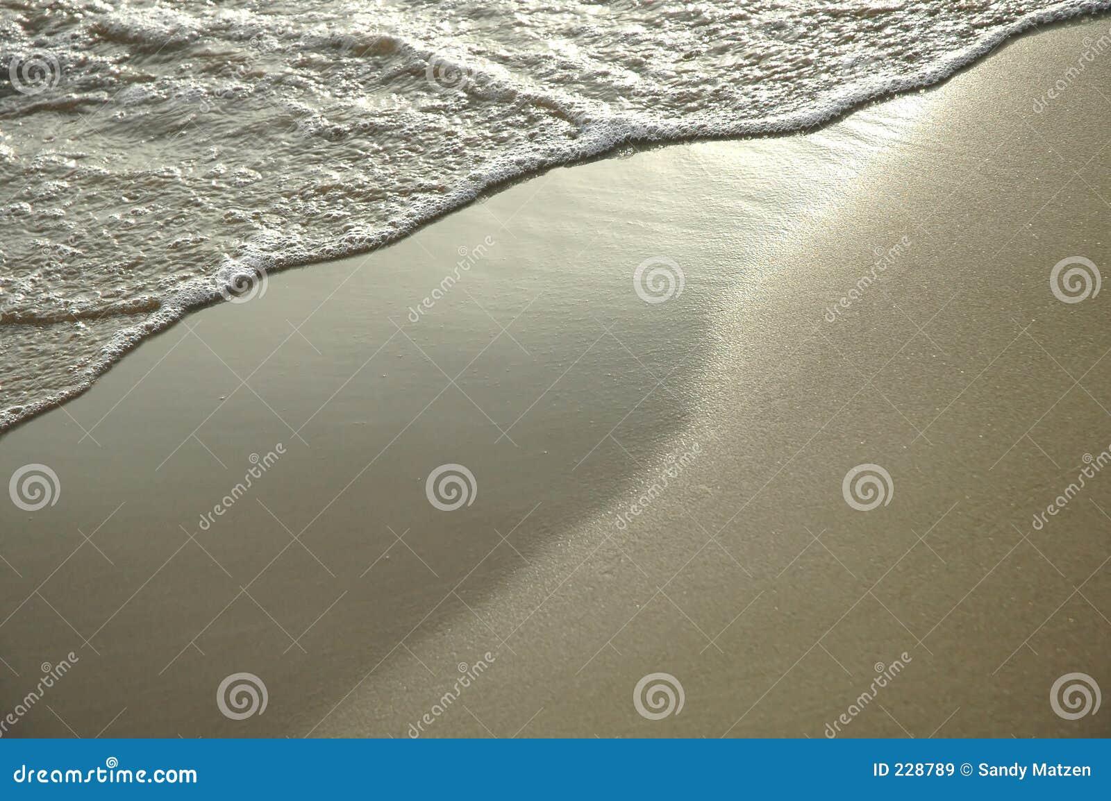 沙子天鹅绒