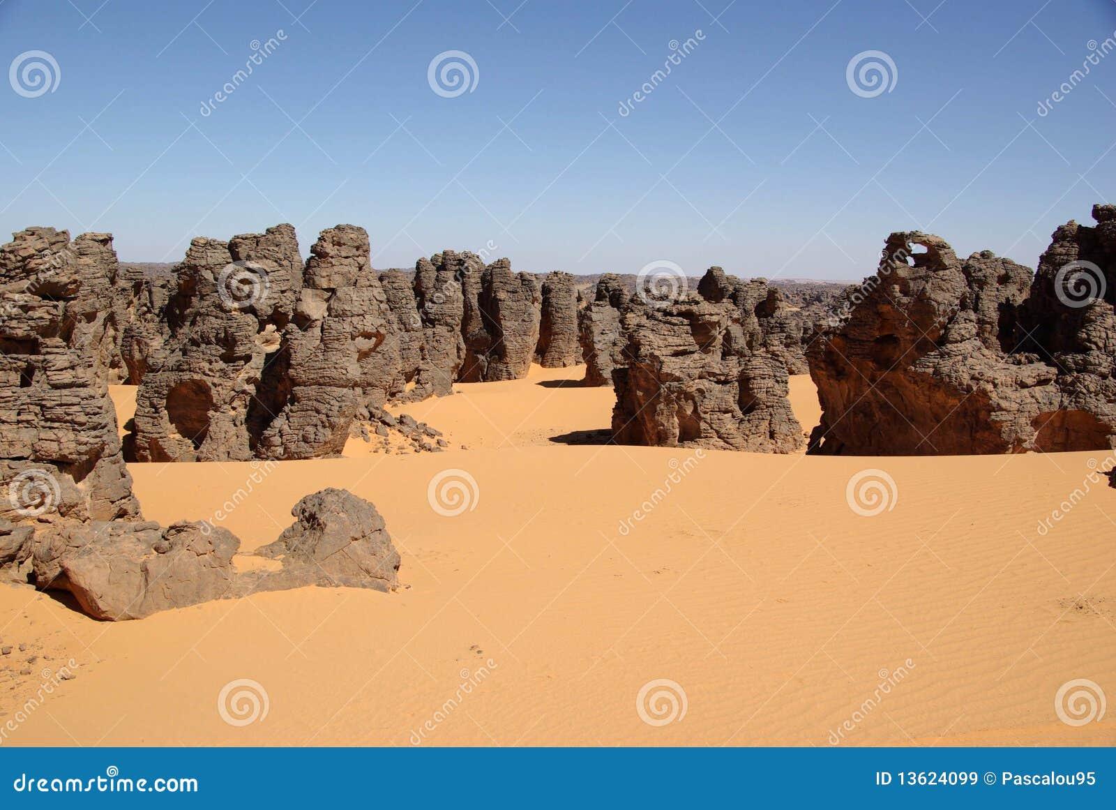 沙漠利比亚