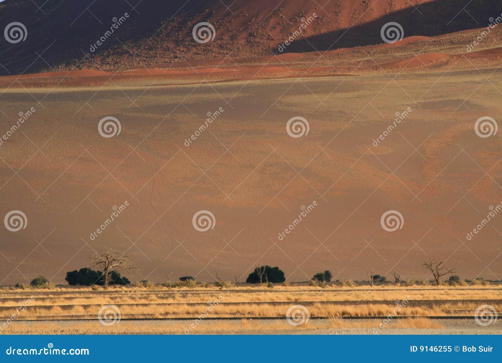 沙漠横向纳米比亚