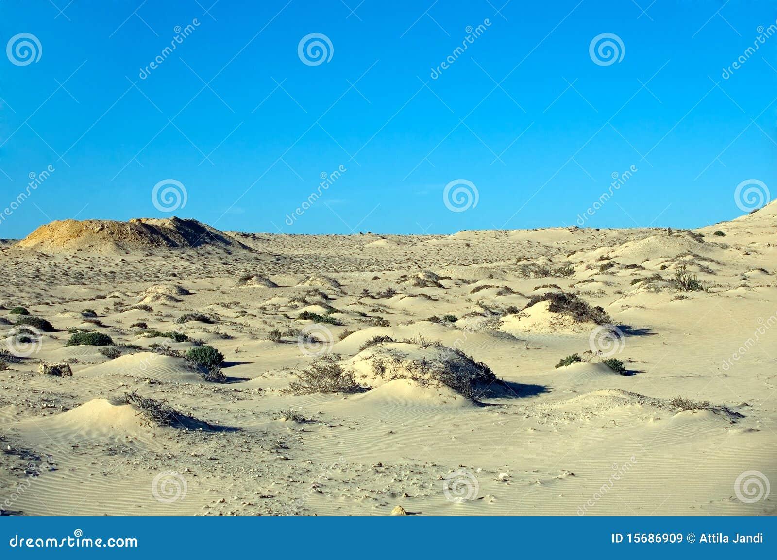 沙漠西部的撒哈拉大沙漠