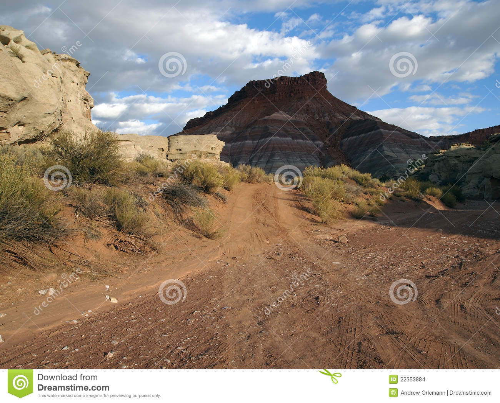 沙漠路洗涤