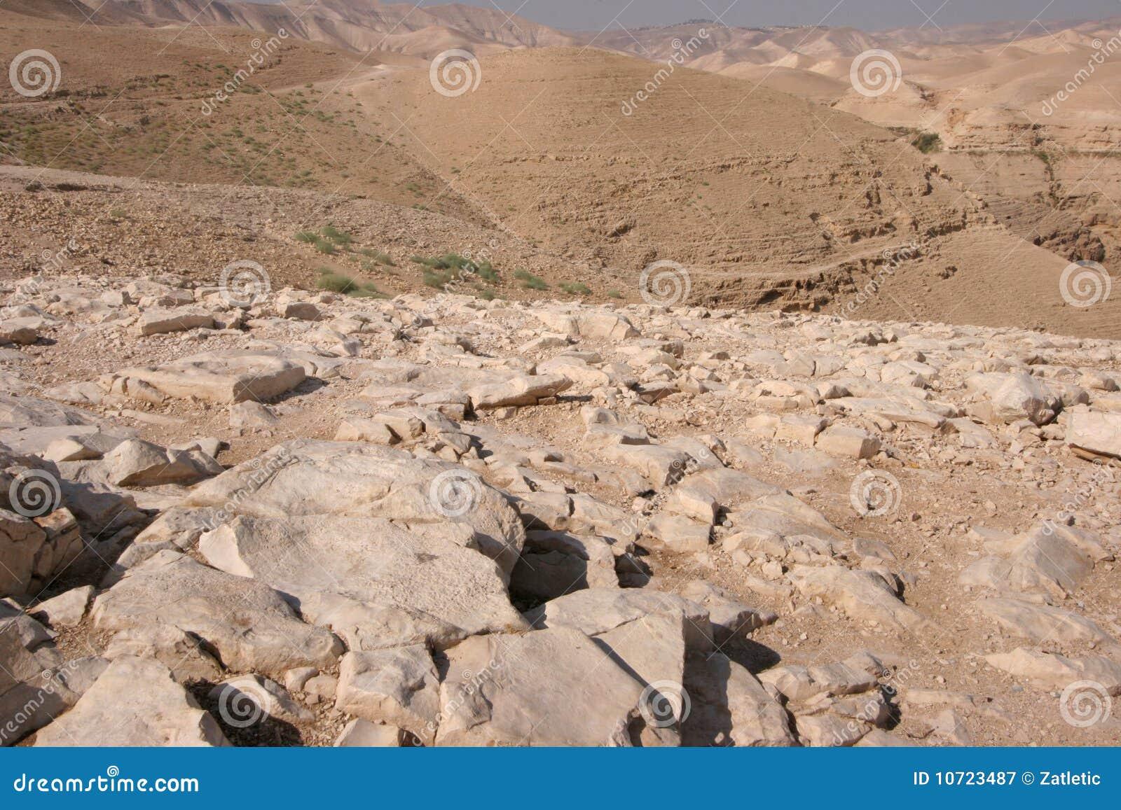 沙漠judea