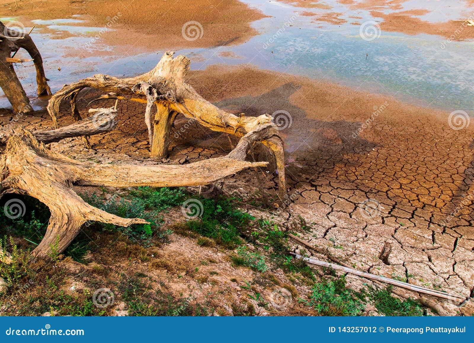 没有水的破裂的干陆 抽象背景