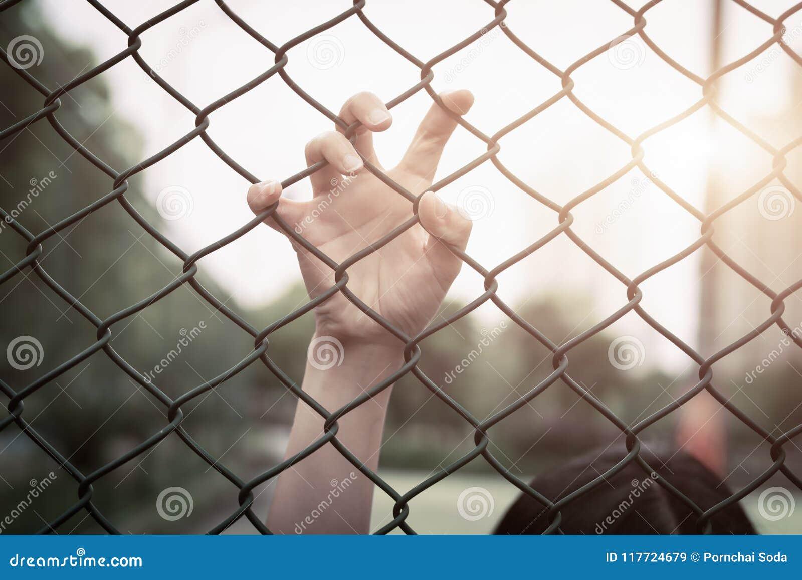 沮丧,麻烦、帮助和机会 在链子链接篱芭的绝望的妇女培养手请求帮忙