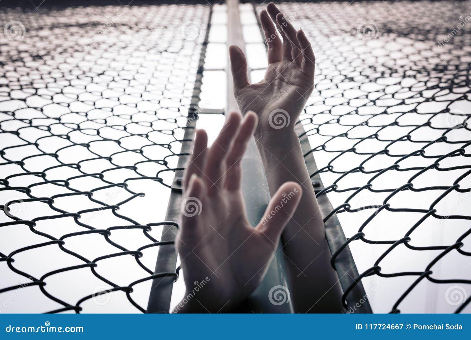 沮丧,麻烦、帮助和机会 培养移交链子链接篱芭的绝望的妇女请求帮忙