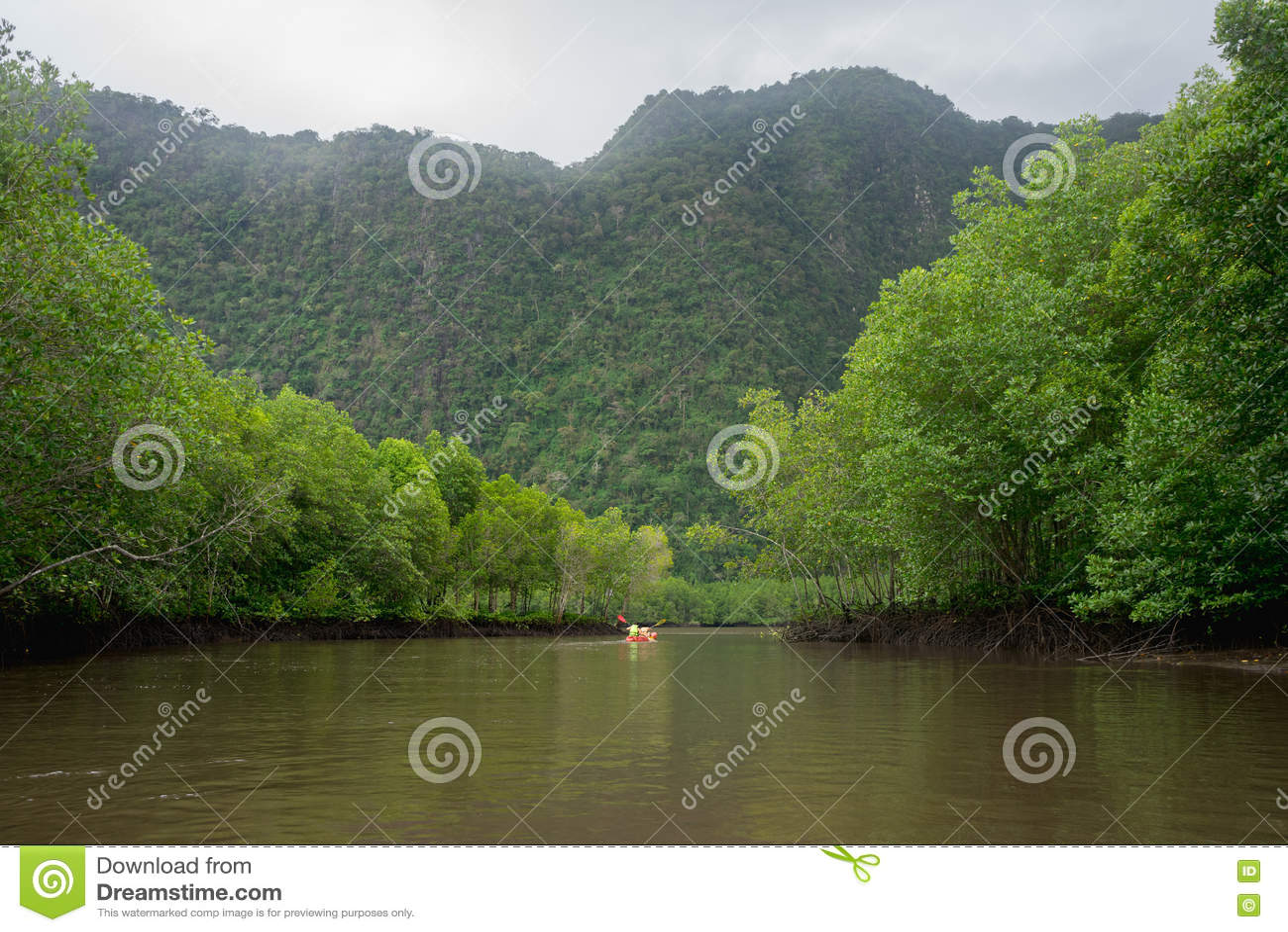 河、山和美洲红树与红色皮船的森林视图