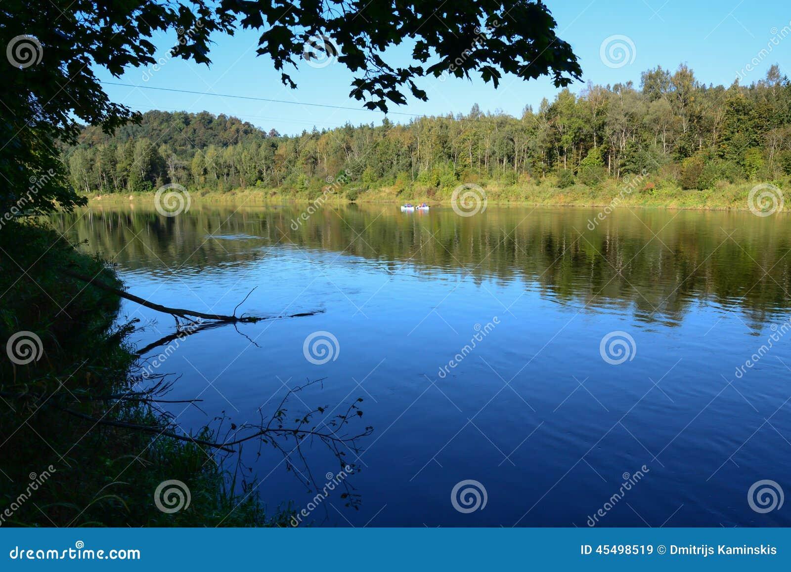 河和结构树