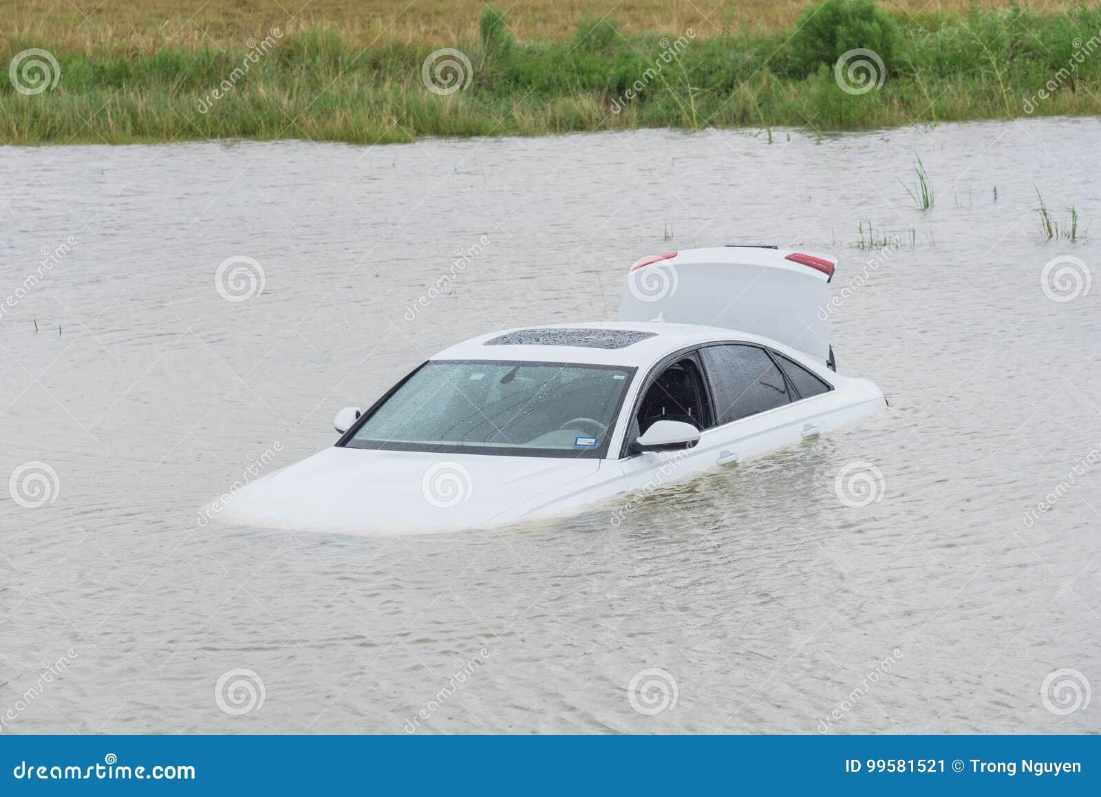 沼泽汽车洪水