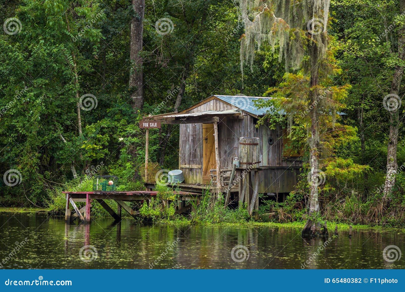 沼泽的老房子在新奥尔良