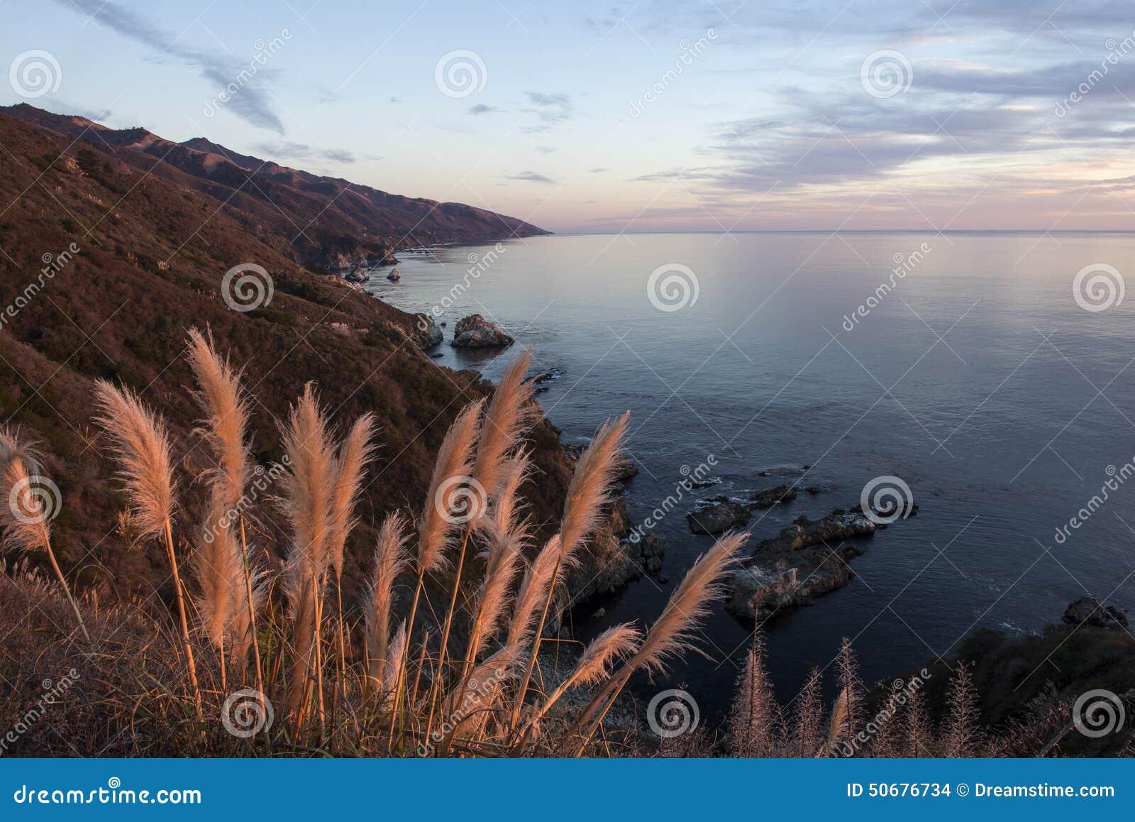 Download 沿大瑟尔海岸线的蒲苇在日落 库存照片. 图片 包括有 重婚, 和平, 平静, 海岸线, 海洋, 原野, 海岸 - 50676734