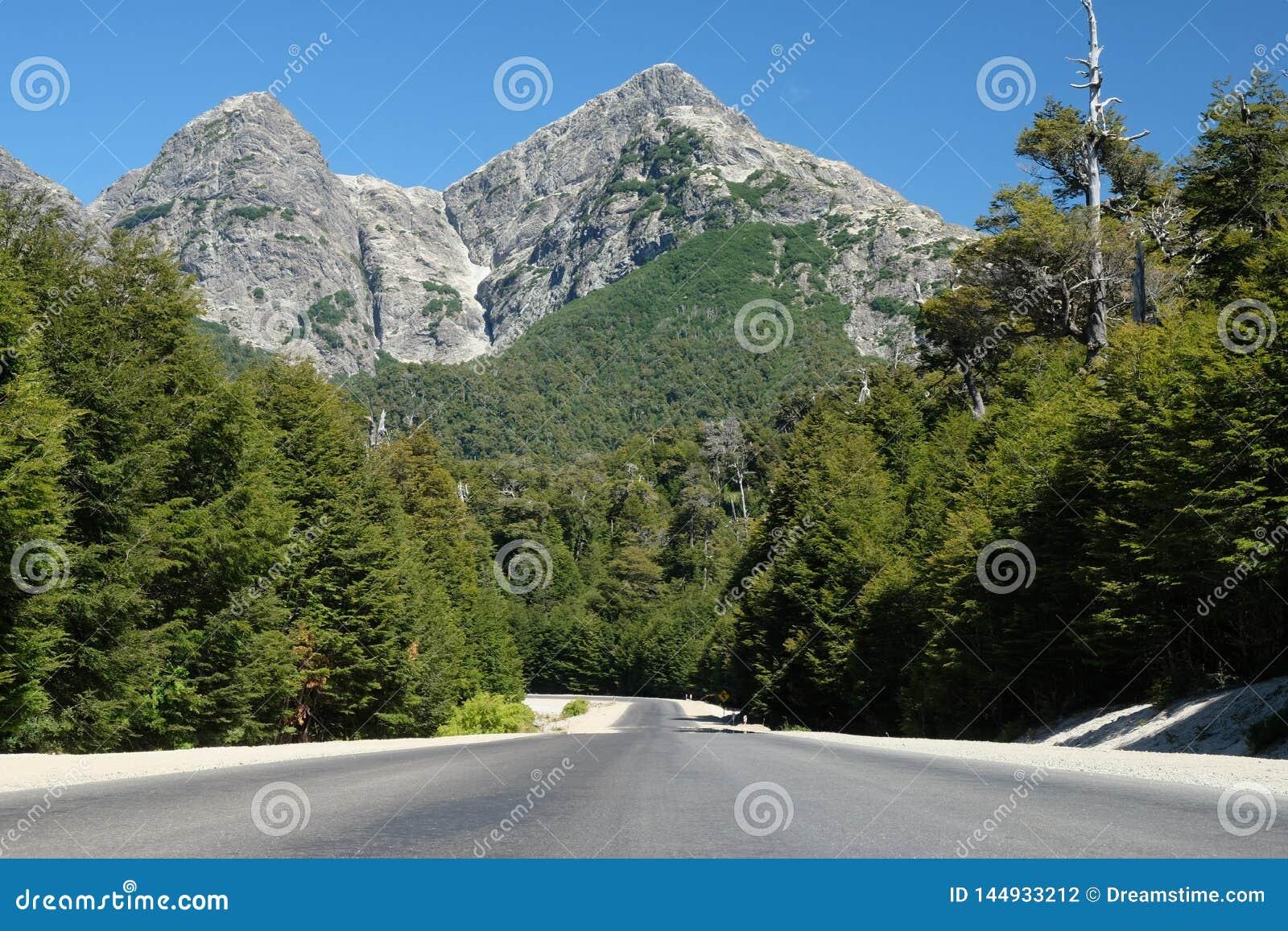 沿路的山口在巴塔哥尼亚